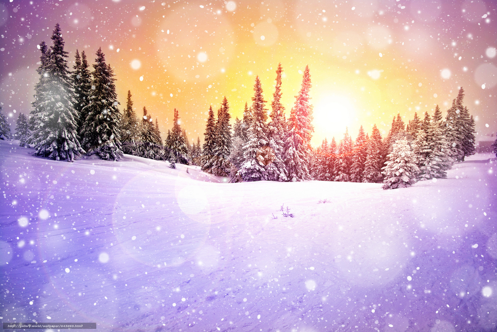 Download wallpaper sunset,  winter,  snow,  trees free desktop wallpaper in the resolution 5976x4000 — picture №643095