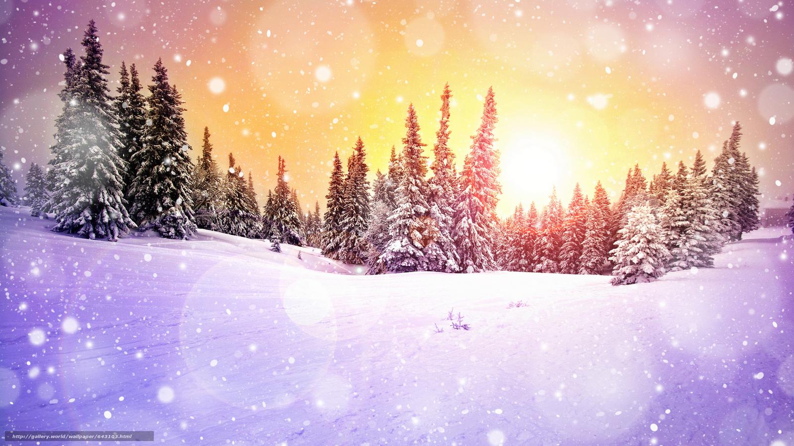 下载壁纸 日落,  冬天,  雪,  树 免费为您的桌面分辨率的壁纸 7680x4320 — 图片 №643103