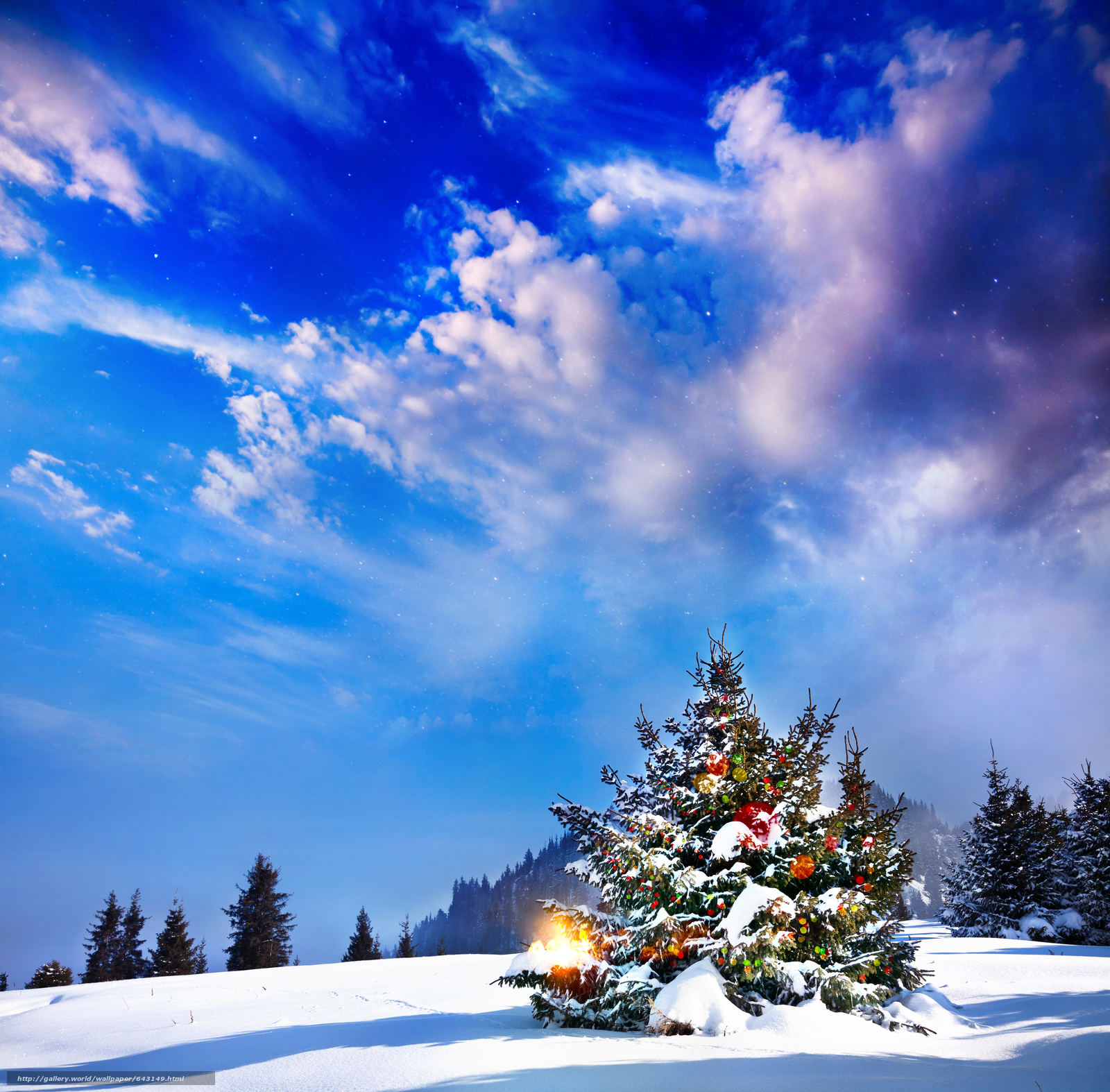 Download wallpaper winter,  snow,  drifts,  Christmas tree free desktop wallpaper in the resolution 7800x7672 — picture №643149