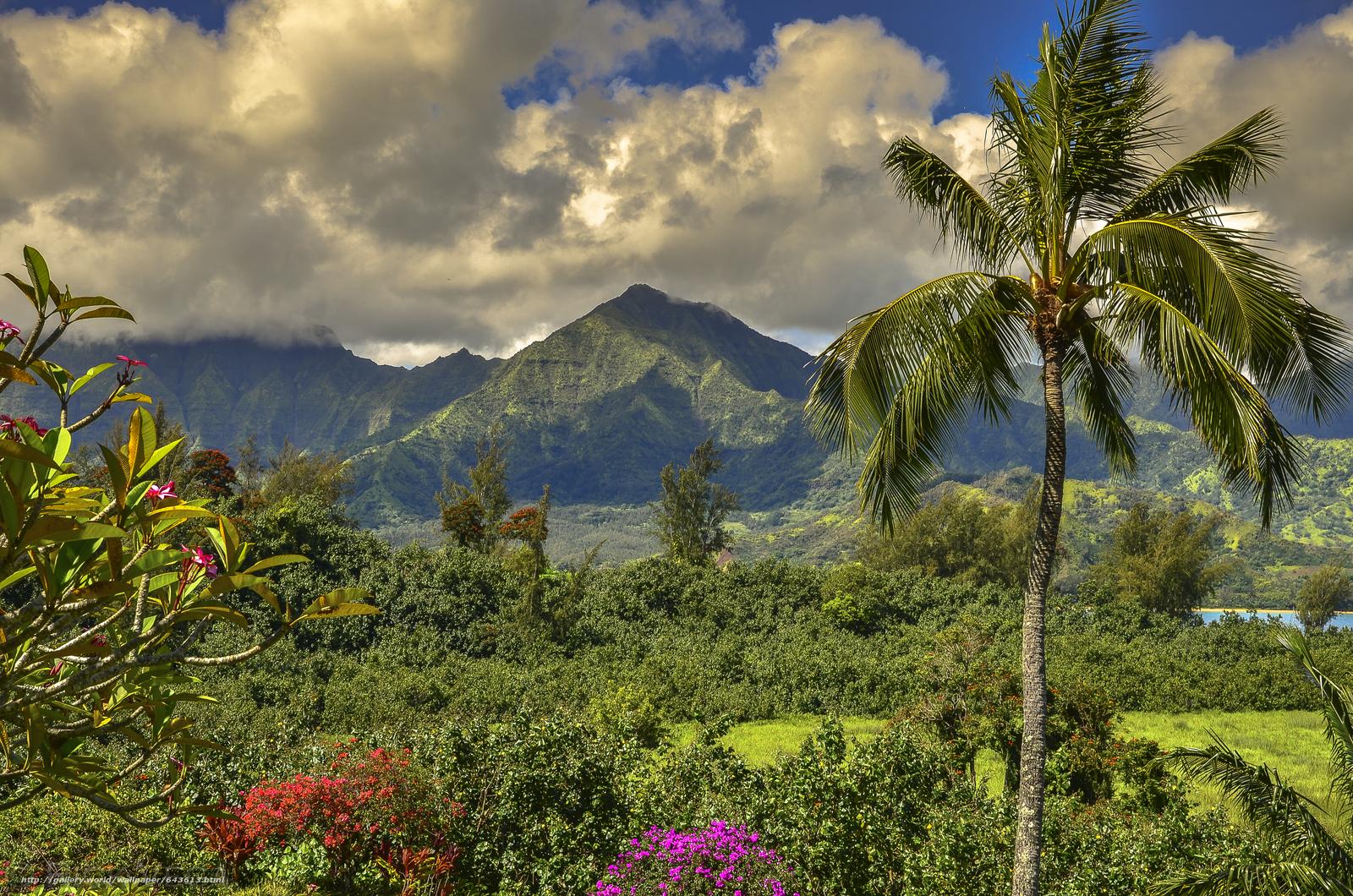 Download wallpaper Kauai Island,  Hawaiian Islands,  Mountains,  trees free desktop wallpaper in the resolution 4928x3264 — picture №643613
