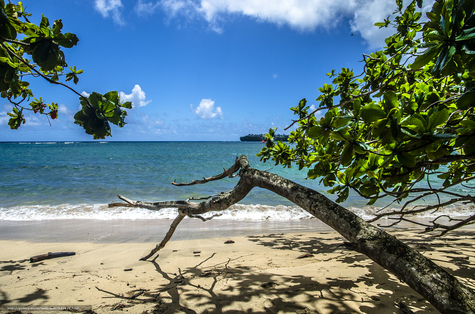 Download wallpaper Kauai Island,  Hawaiian Islands,  sea,  shore free desktop wallpaper in the resolution 4928x3264 — picture №643615