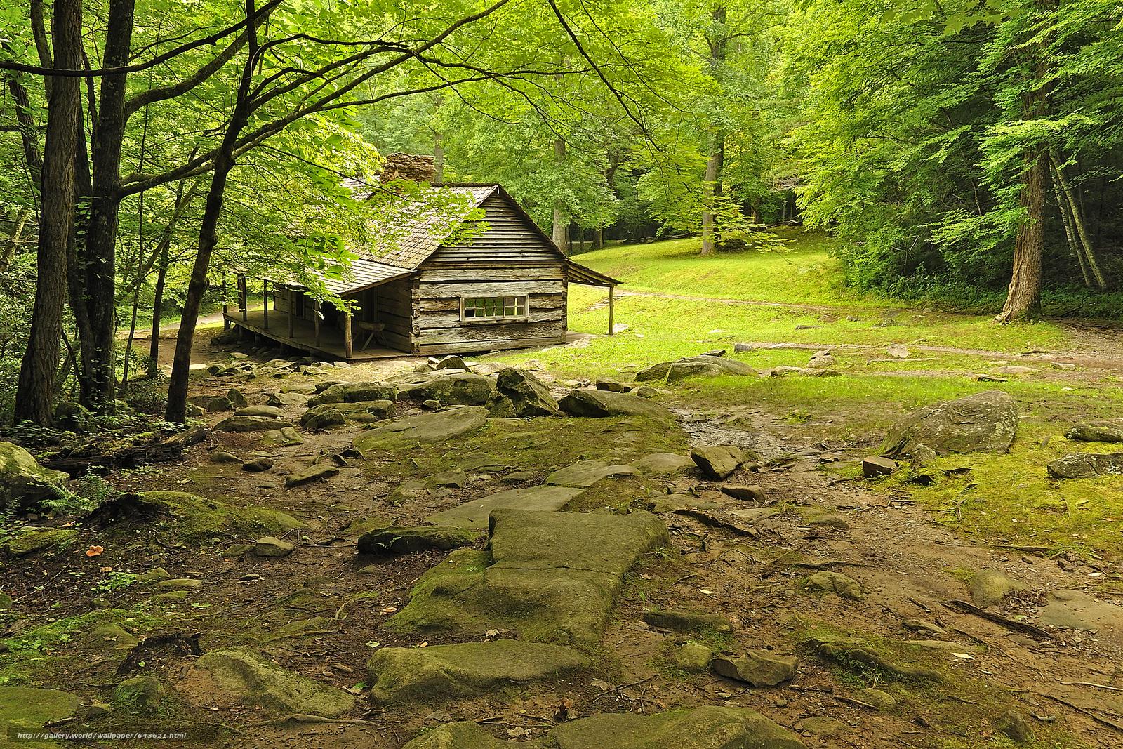 Tlcharger Fond d'ecran forêt,  arbres,  clairière,  cabine Fonds d'ecran gratuits pour votre rsolution du bureau 3999x2666 — image №643621