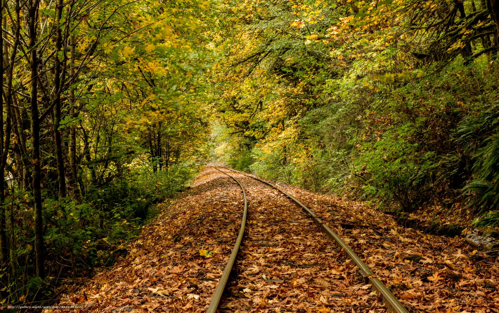 Скачать обои Дождь,  листья,  река,  железная дорога бесплатно для рабочего стола в разрешении 6944x4352 — картинка №643635