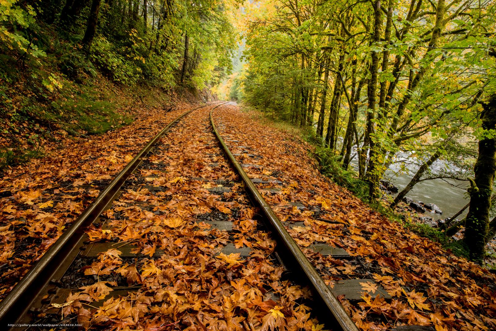 Скачать обои Дождь,  листья,  река,  железная дорога бесплатно для рабочего стола в разрешении 7341x4899 — картинка №643636