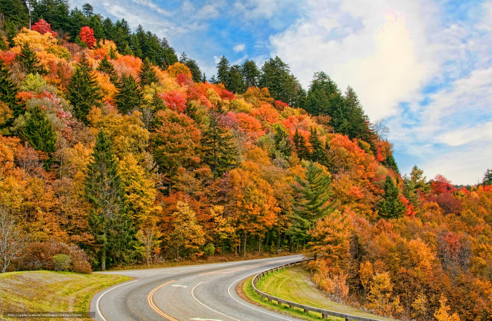 Download Wallpaper Smoky Mountain National Park Autumn