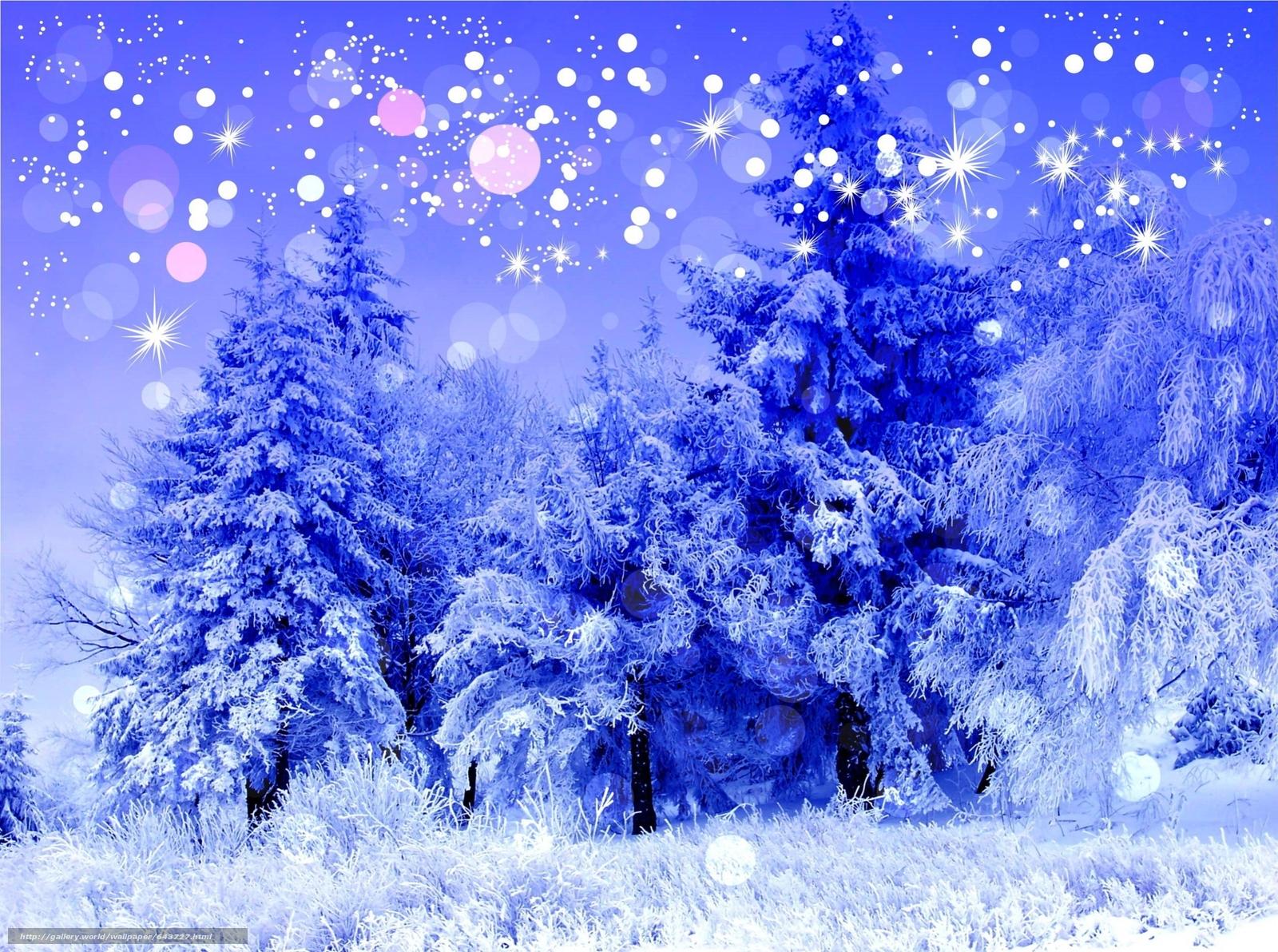 Скачать обои зима,  деревья,  снег,  иней бесплатно для рабочего стола в разрешении 2500x1862 — картинка №643727