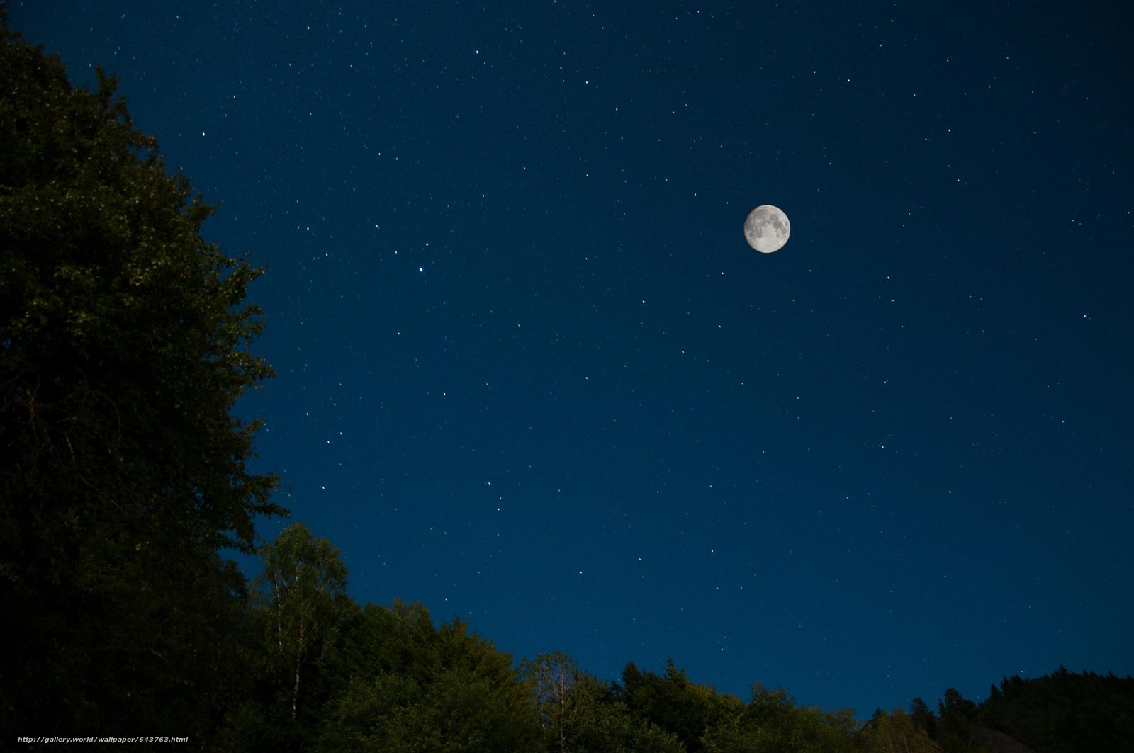 Скачать обои Звезды,  луна,  небо,  природа бесплатно для рабочего стола в разрешении 4288x2848 — картинка №643763