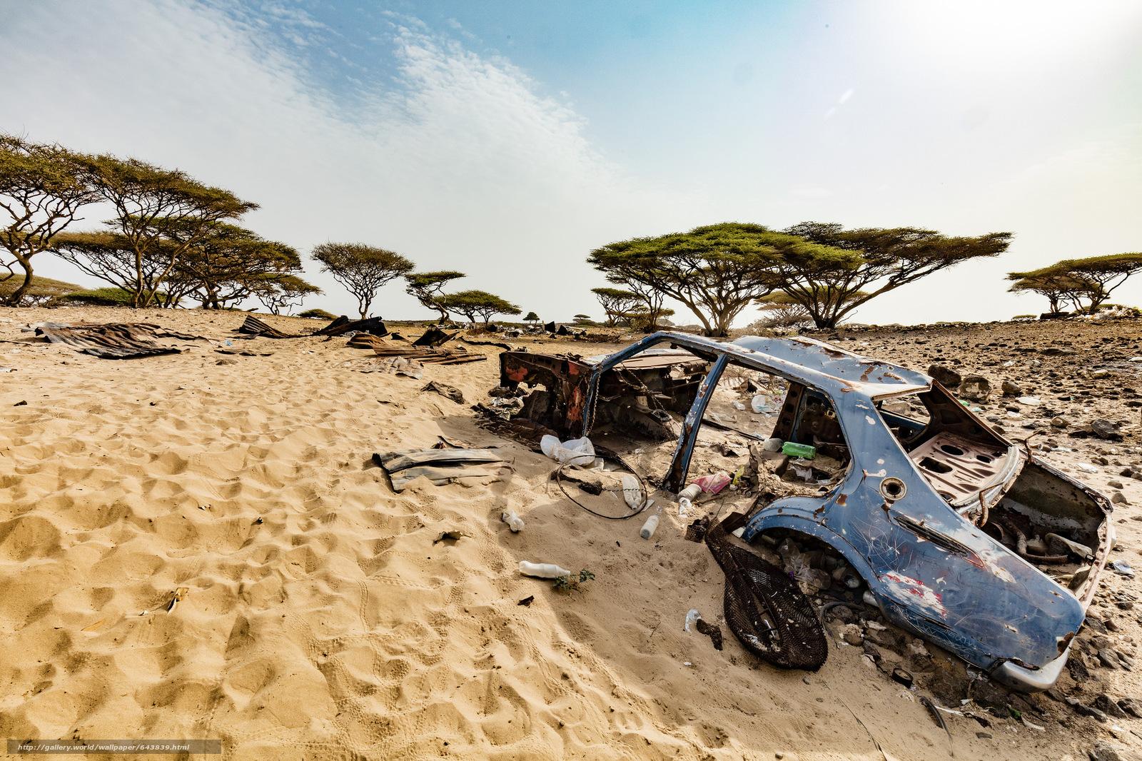 Скачать обои Пустыня,  песок,  деревья,  небо бесплатно для рабочего стола в разрешении 2048x1365 — картинка №643839