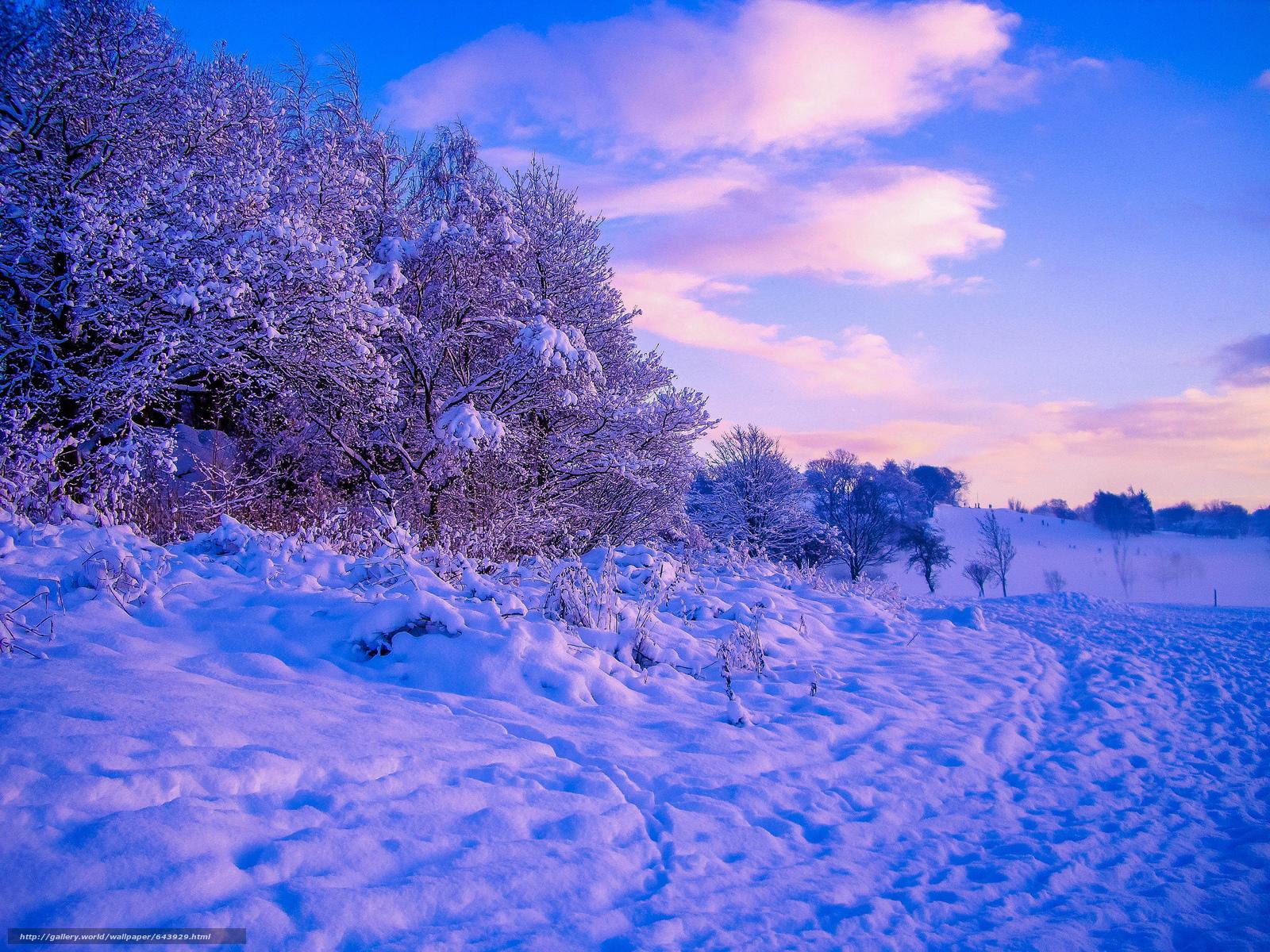 Descargar gratis invierno,  nieve,  árboles,  derivas Fondos de escritorio en la resolucin 2048x1536 — imagen №643929