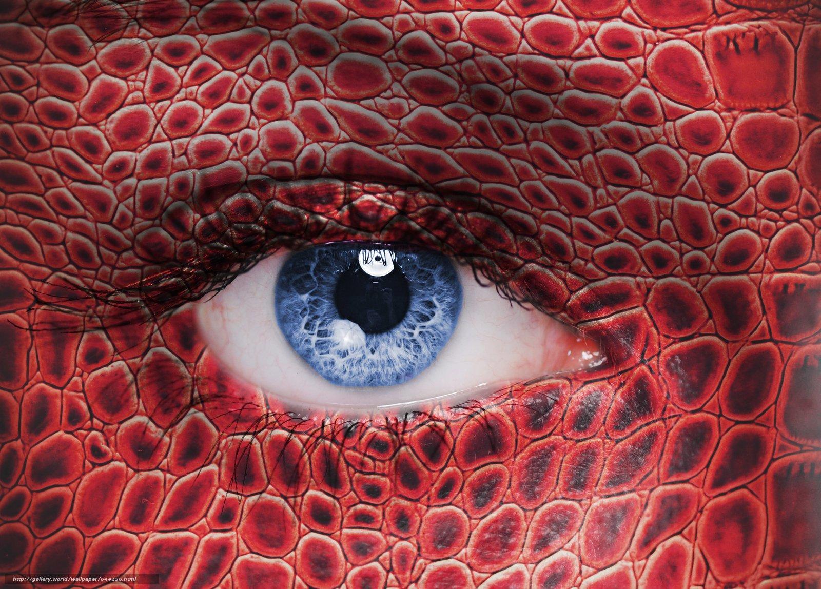 Скачать обои глаз,  глаза,  человеческие,  человек бесплатно для рабочего стола в разрешении 5686x4080 — картинка №644156