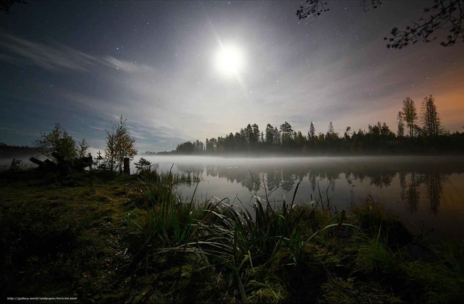 Скачать обои Ночь,  звёзды,  трава,  деревья бесплатно для рабочего стола в разрешении 3500x2295 — картинка №644199