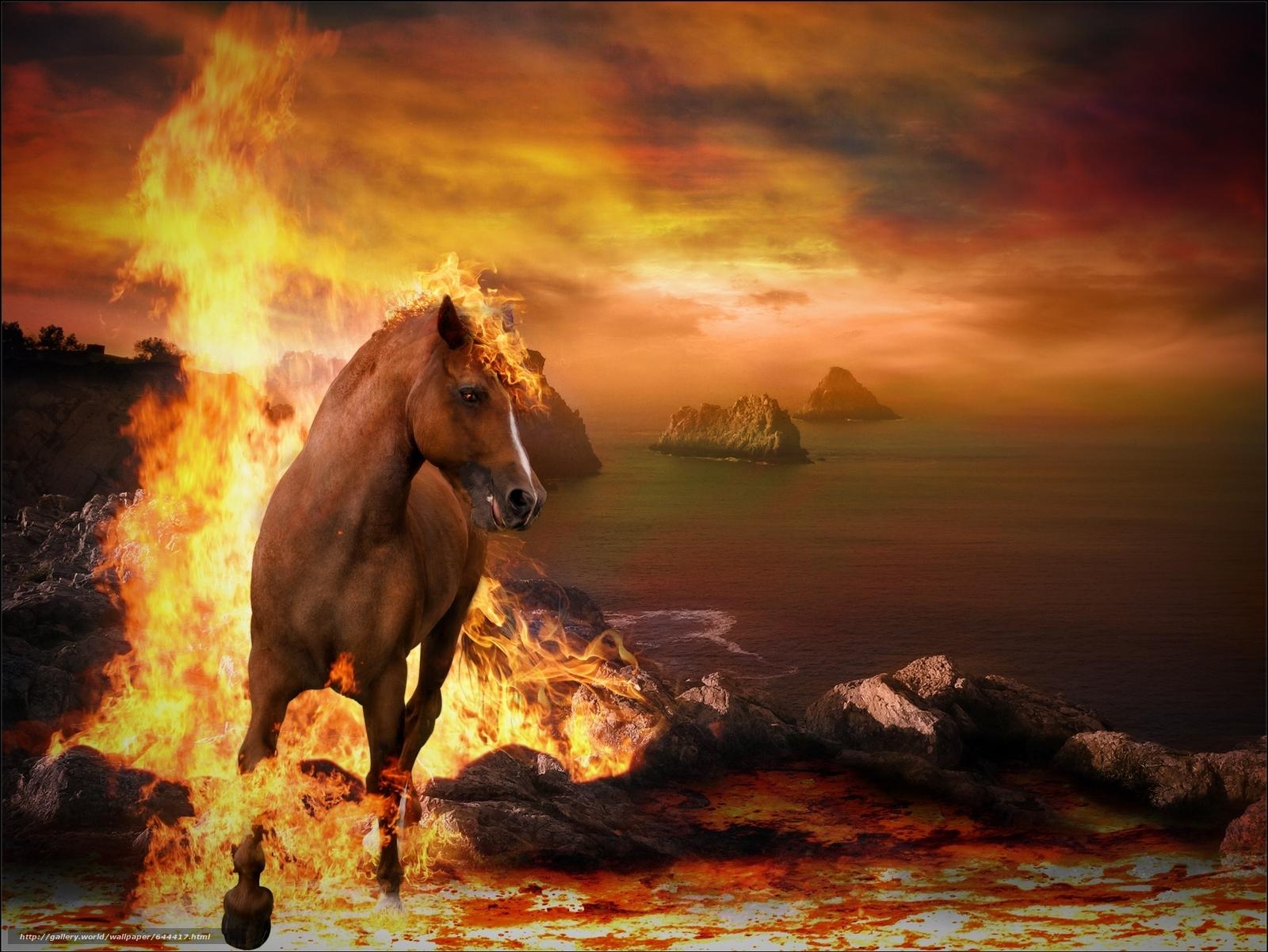 scaricare gli sfondi tramonto,  mare,  fuoco,  cavallo Sfondi gratis per la risoluzione del desktop 2000x1501 — immagine №644417