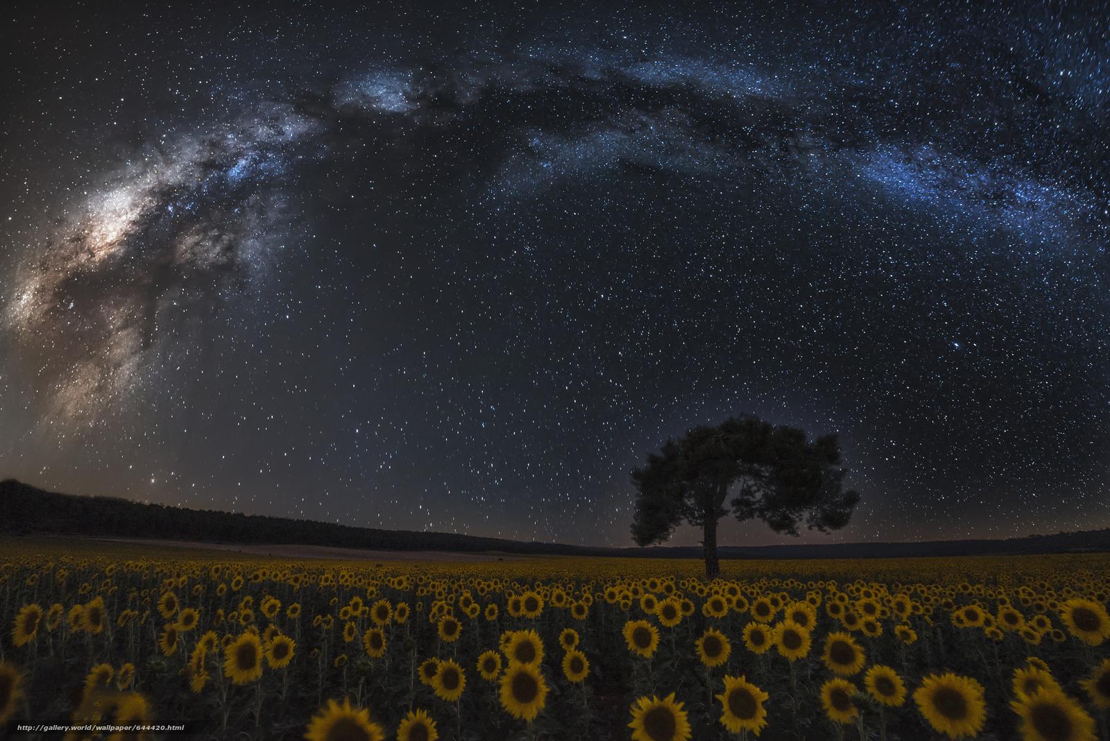 Descargar gratis noche,  cielo,  Estrella,  galaxia Fondos de escritorio en la resolucin 2048x1367 — imagen №644420