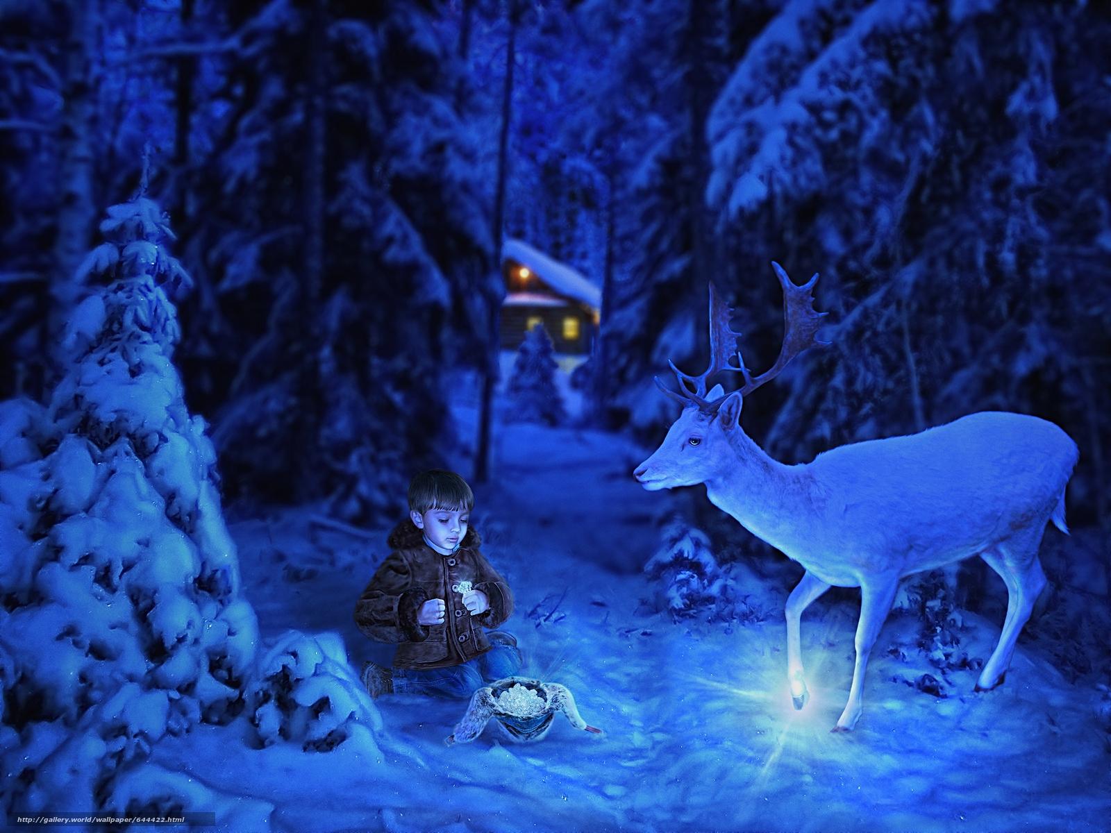 Скачать обои серебряное копытце,  мальчик,  олень,  лес бесплатно для рабочего стола в разрешении 2750x2063 — картинка №644422