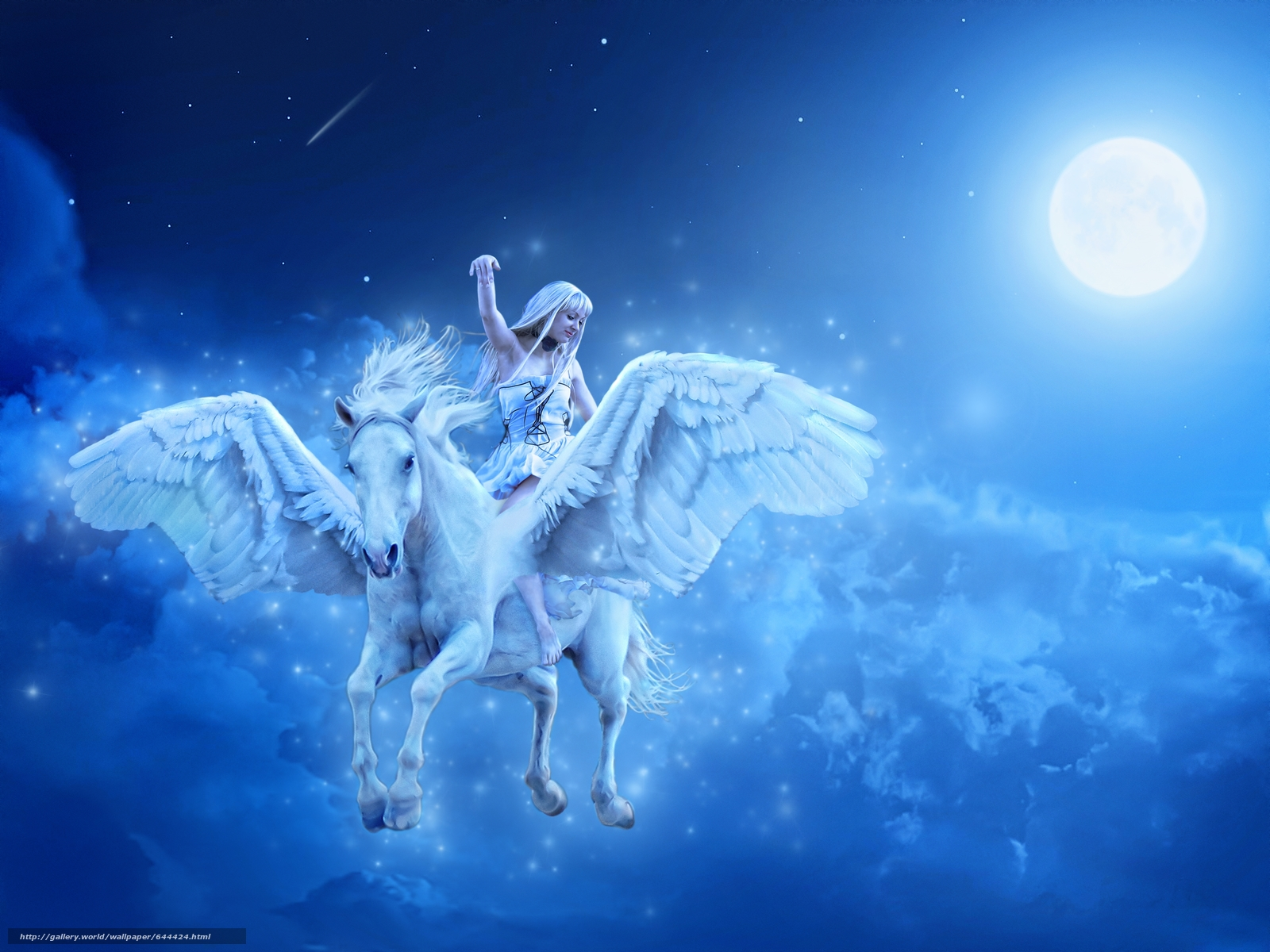 Download wallpaper girl,  horse,  Pegasus,  night free desktop wallpaper in the resolution 4300x3225 — picture №644424