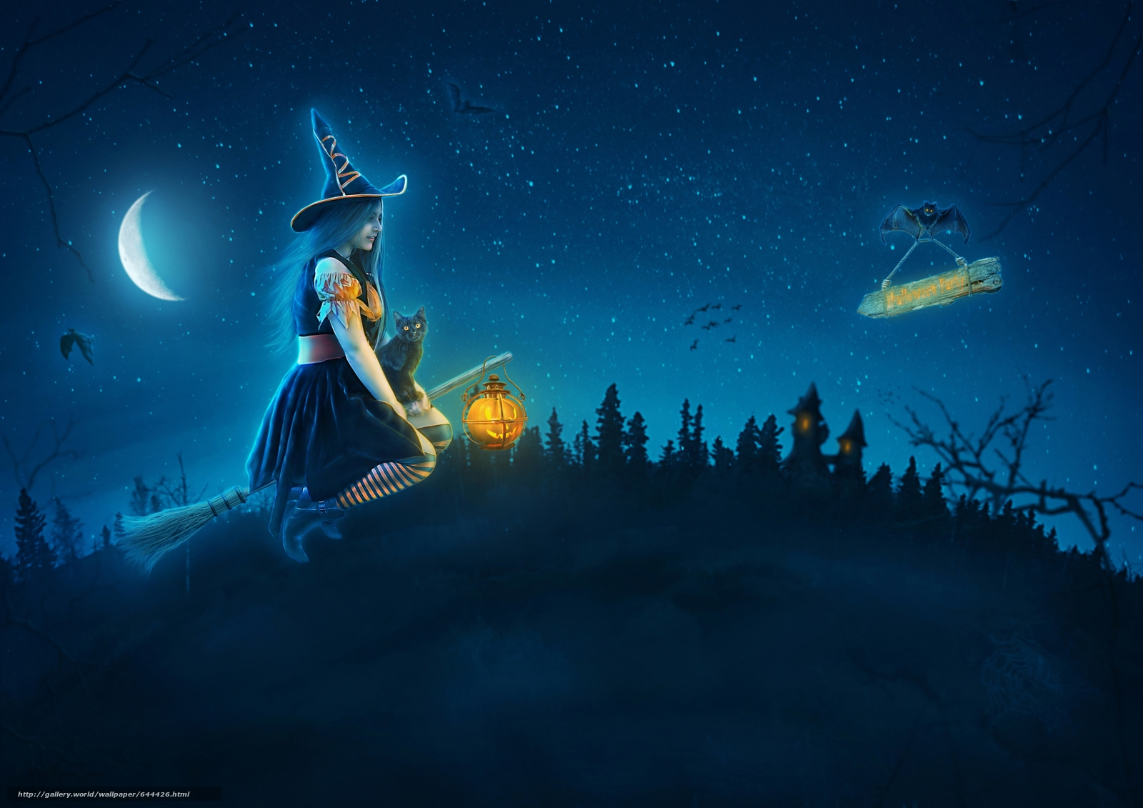 Download wallpaper night,  moon,  vedmachka on a broomstick,  kitten free desktop wallpaper in the resolution 5184x3666 — picture №644426