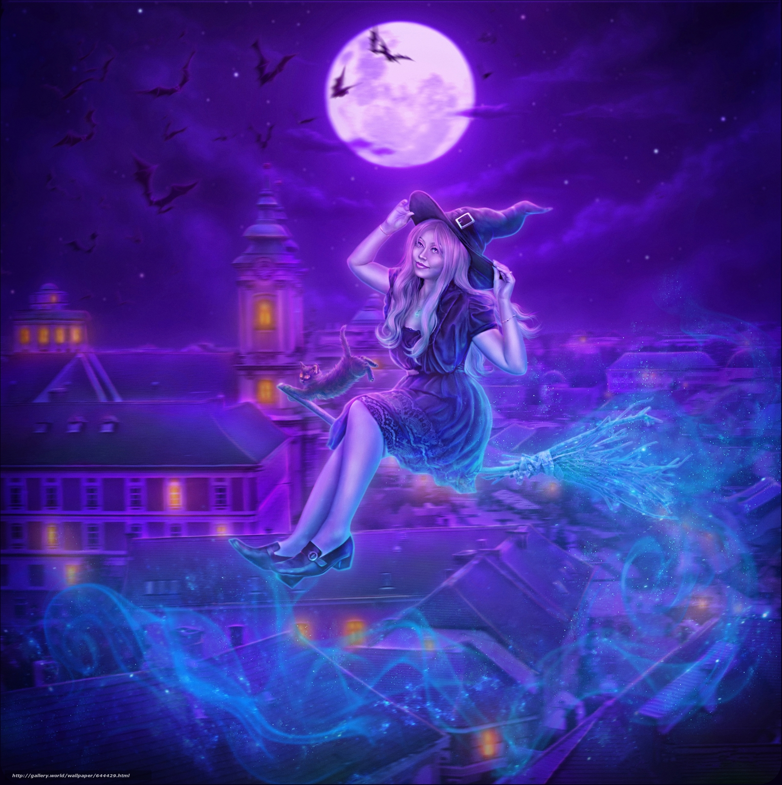 Download wallpaper night,  moon,  vedmachka on a broomstick,  kitten free desktop wallpaper in the resolution 3504x3519 — picture №644429