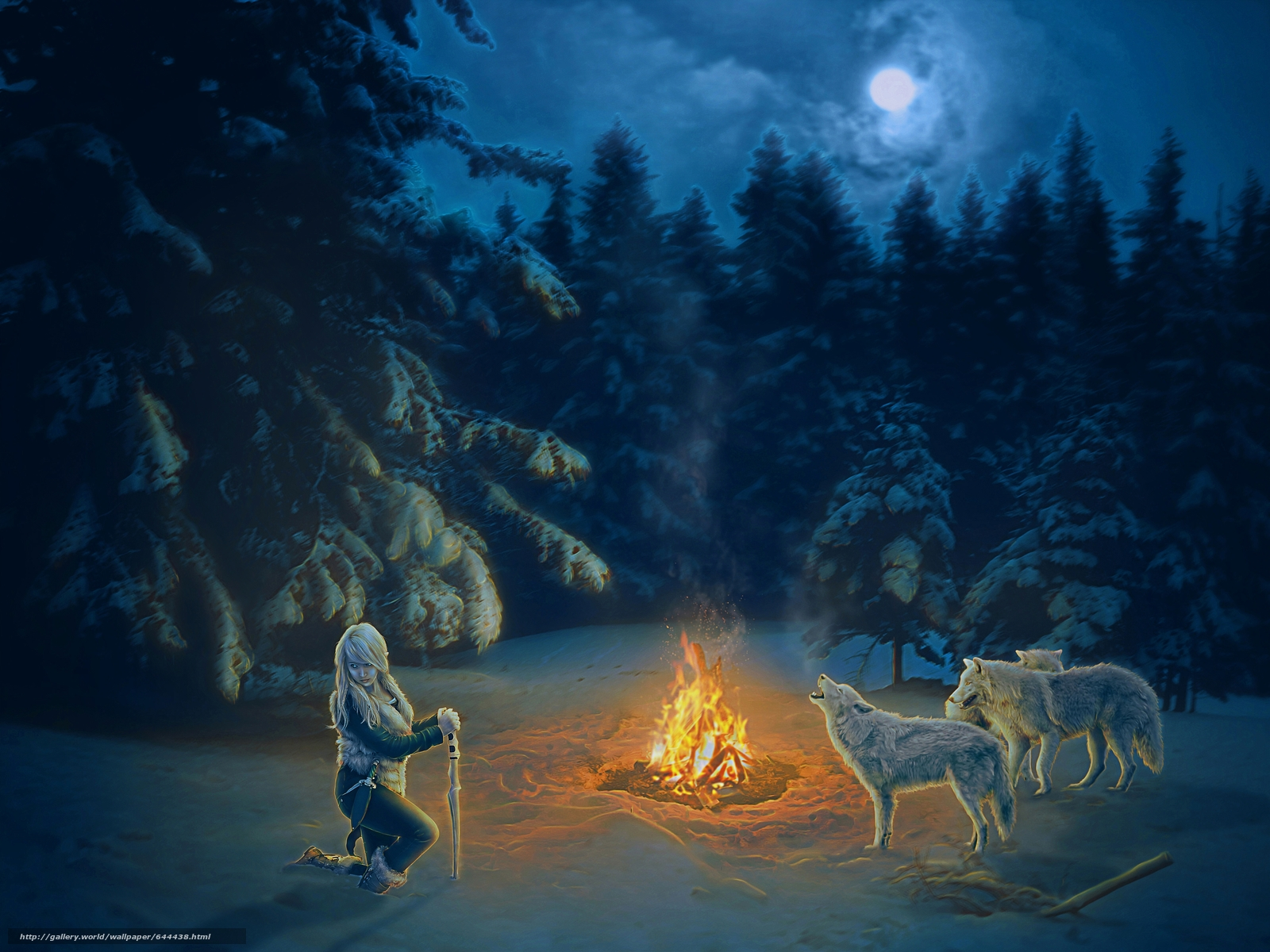 Download wallpaper night,  BONFIRE,  girl,  Wolves free desktop wallpaper in the resolution 4264x3198 — picture №644438
