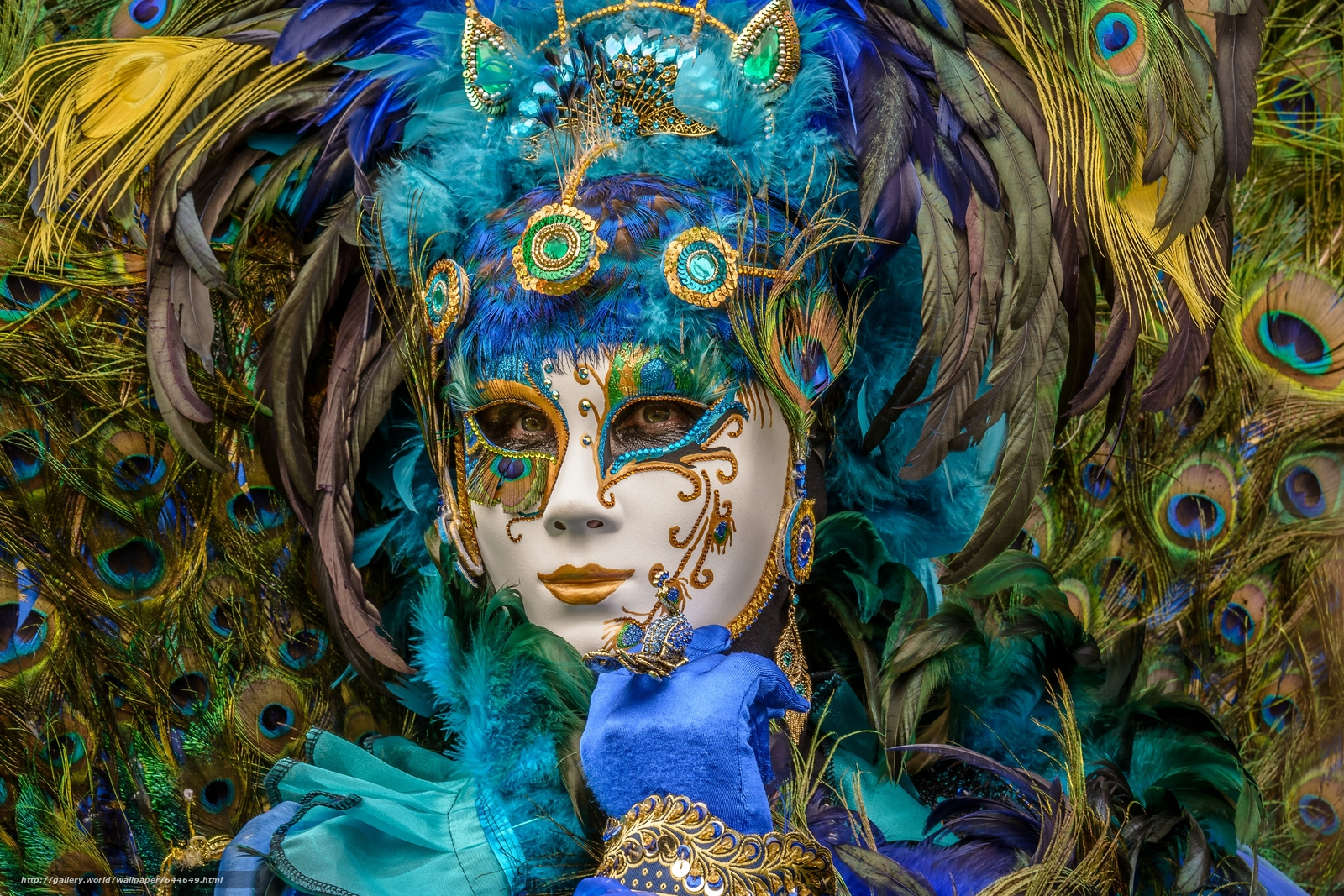 Download wallpaper carnival,  mask,  plumage,  peacock free desktop wallpaper in the resolution 4647x3098 — picture №644649