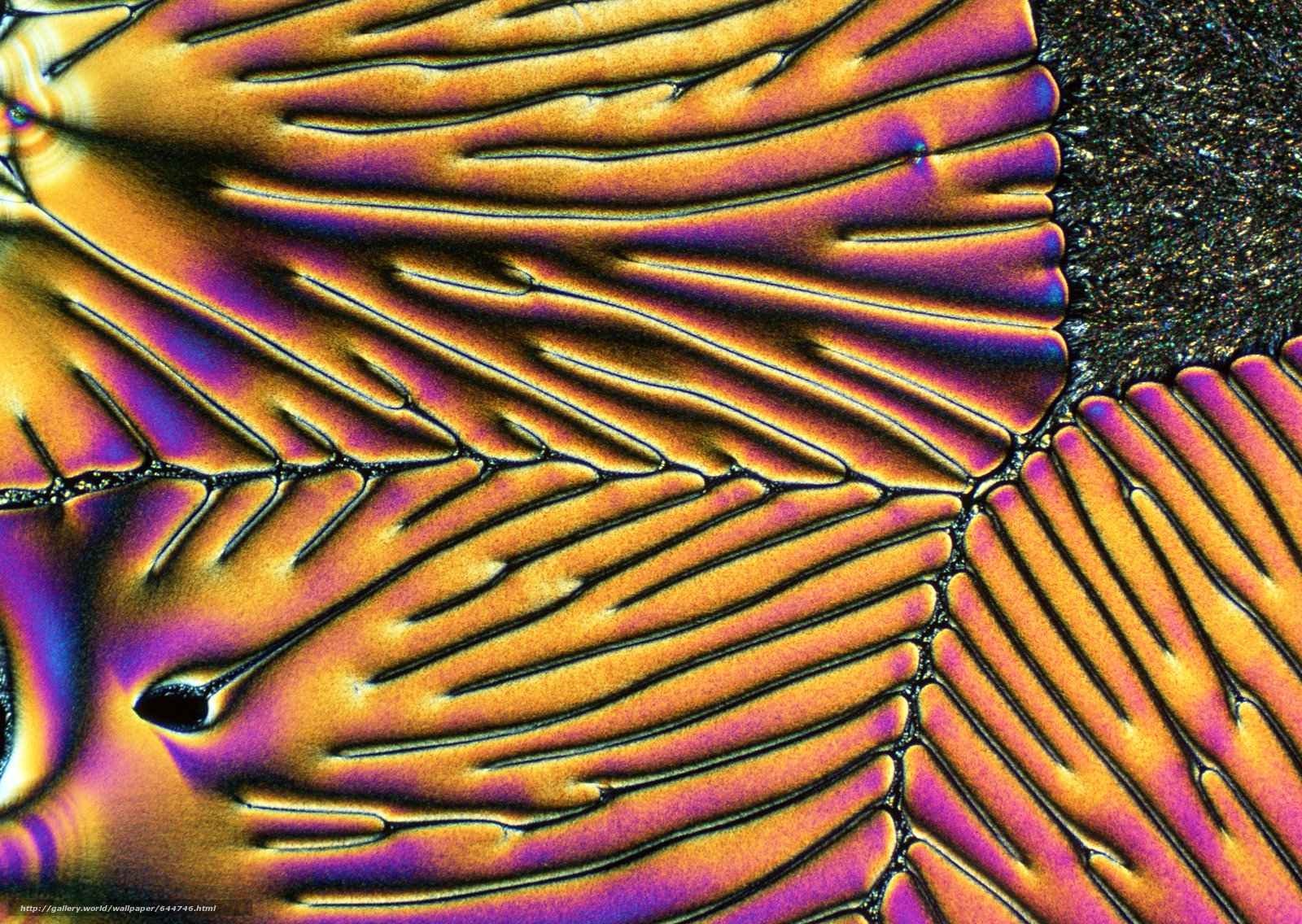 Скачать обои кристаллы под микроскопом,  кристалл,  микроскоп,  увеличение бесплатно для рабочего стола в разрешении 2950x2094 — картинка №644746