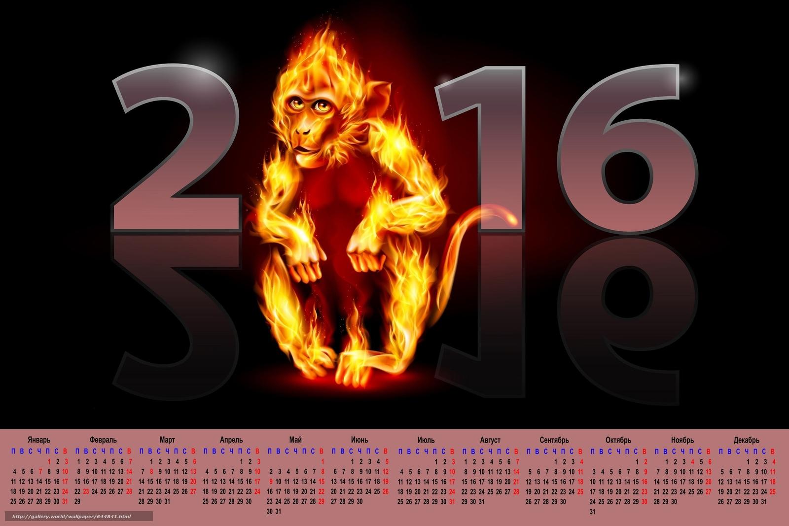 Скачать обои календарь с огненой обезьяной,  календарь на 2016 год,  календарь с обезьяной,  2016 бесплатно для рабочего стола в разрешении 3600x2400 — картинка №644841