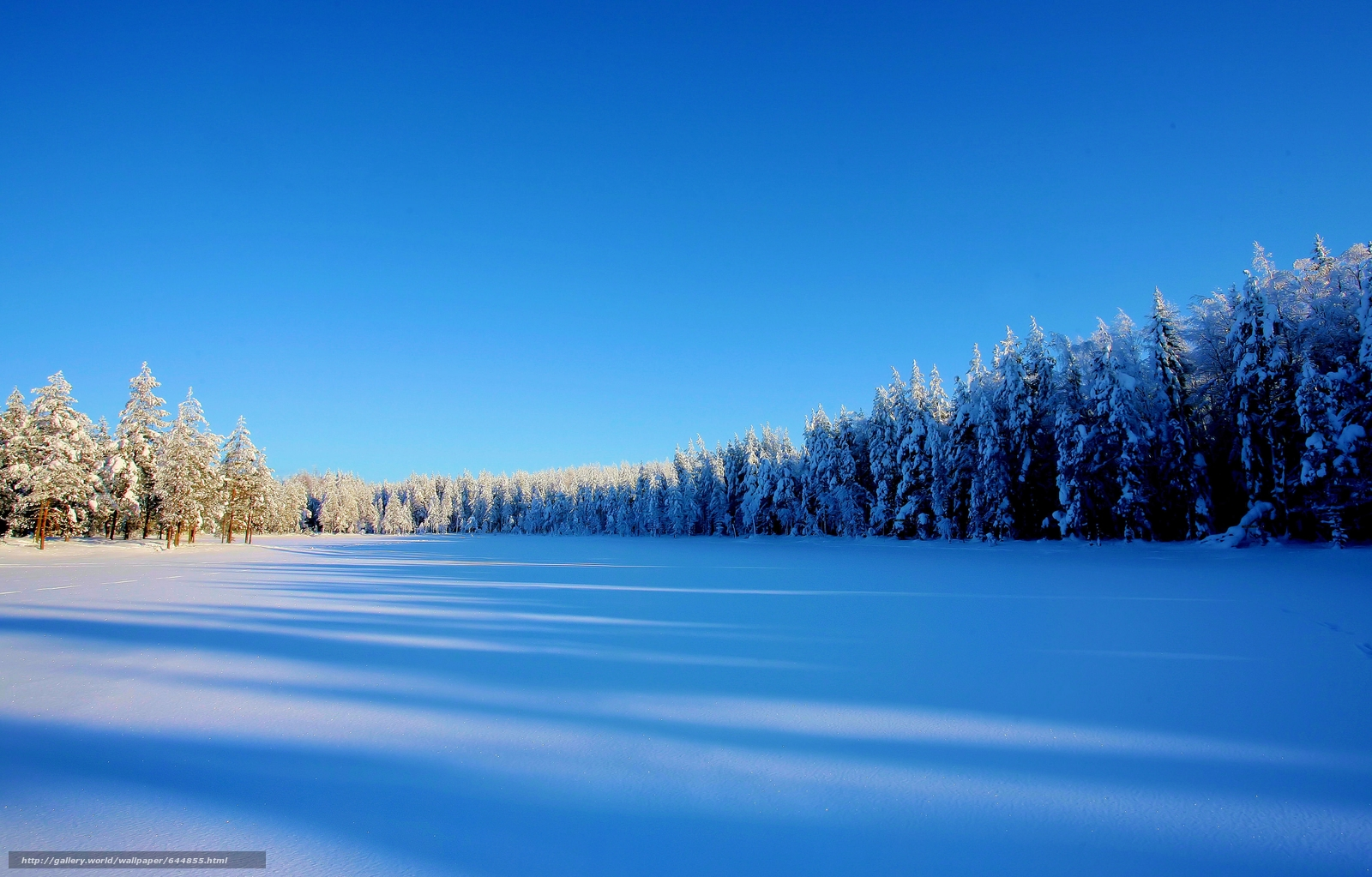 Download wallpaper winter,  snow,  trees,  drifts free desktop wallpaper in the resolution 4196x2682 — picture №644855