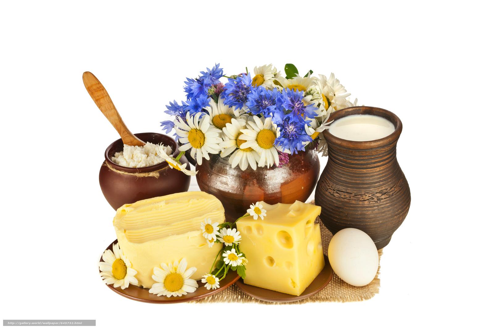Скачать обои сыр,  еда,  пища,  провиант бесплатно для рабочего стола в разрешении 9914x6614 — картинка №645732
