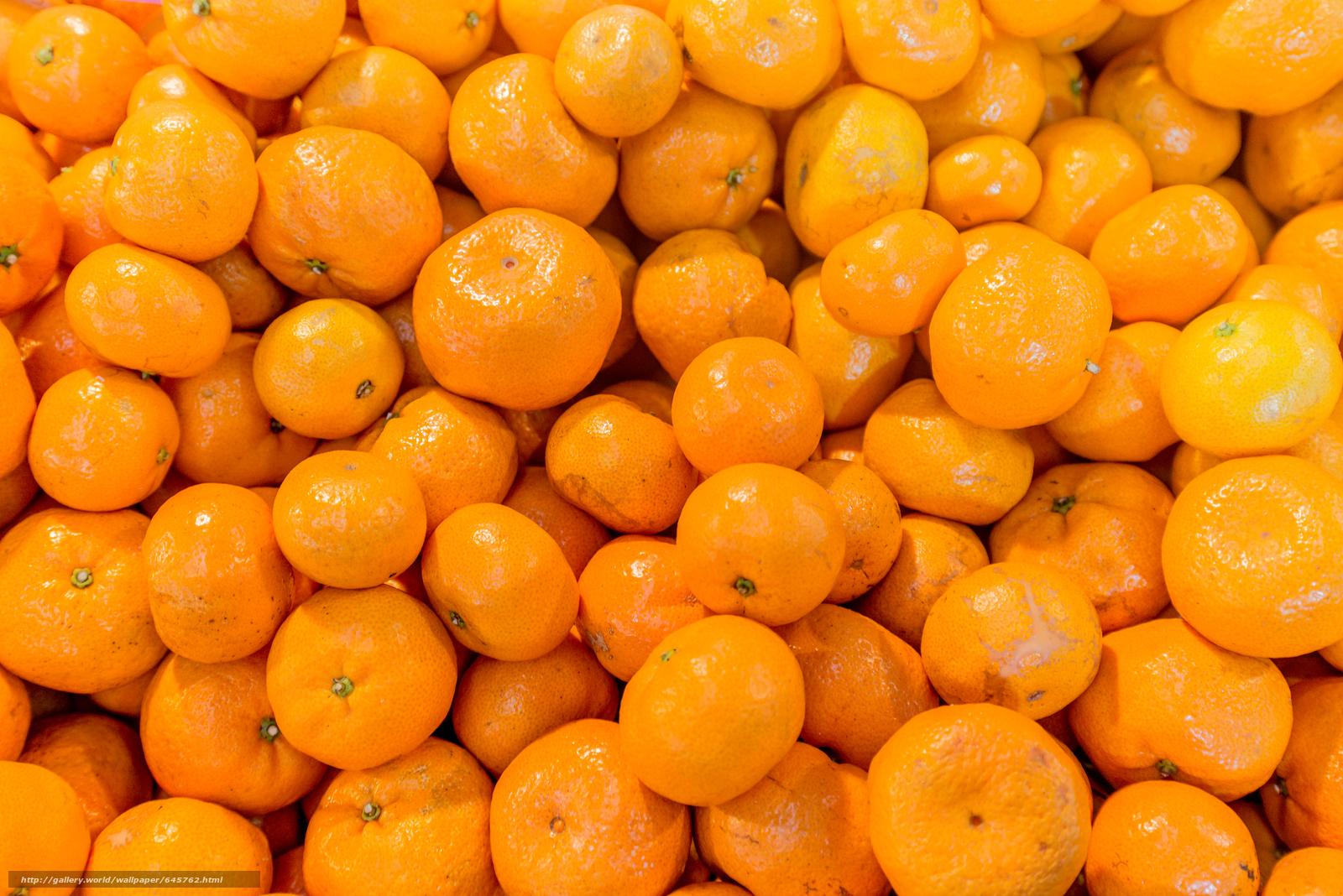 Descargar gratis tangerinas,  tsytrusy,  comida,  fruta Fondos de escritorio en la resolucin 6016x4016 — imagen №645762