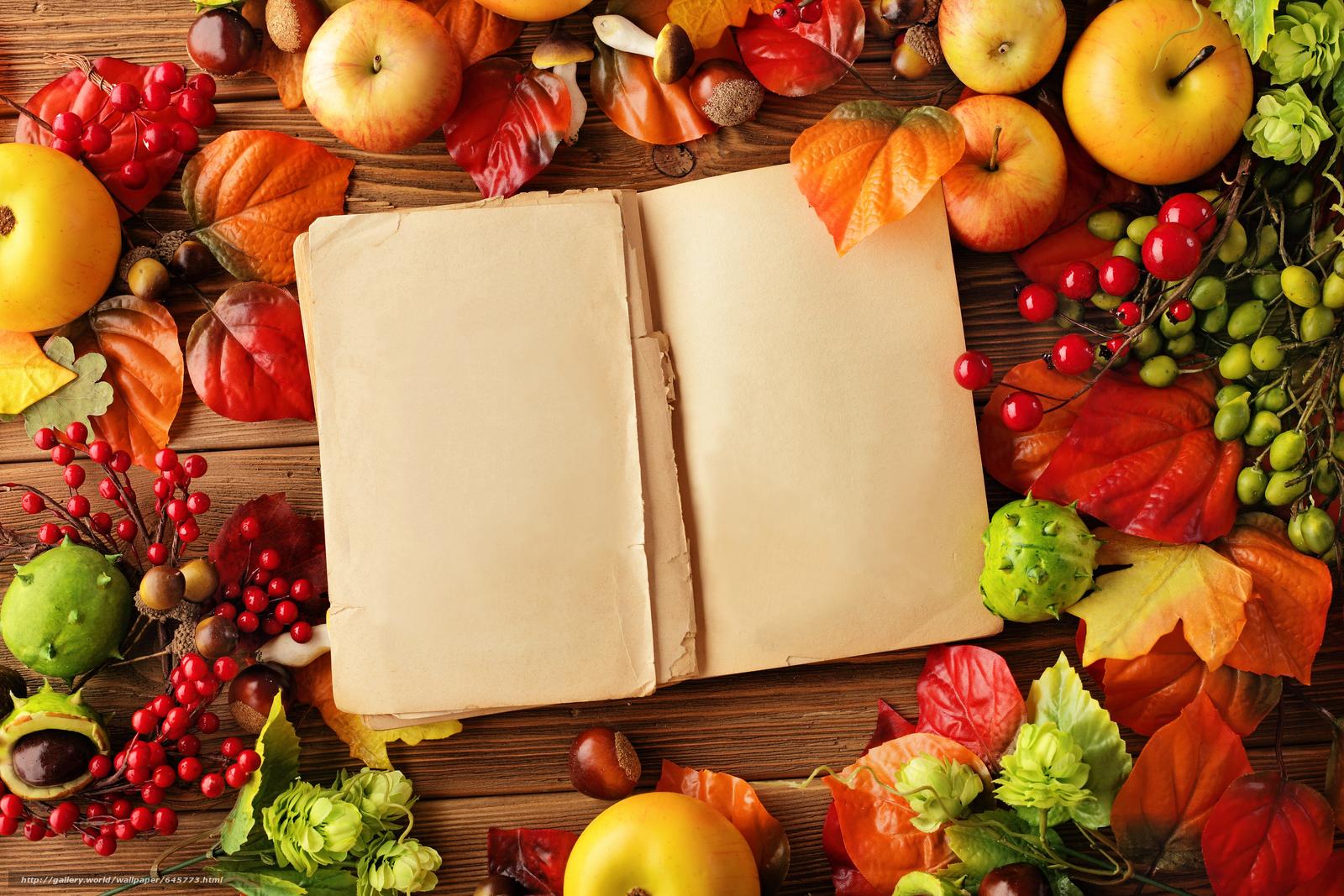 Скачать обои яблоки,  фркты,  еда,  стол бесплатно для рабочего стола в разрешении 5616x3744 — картинка №645773