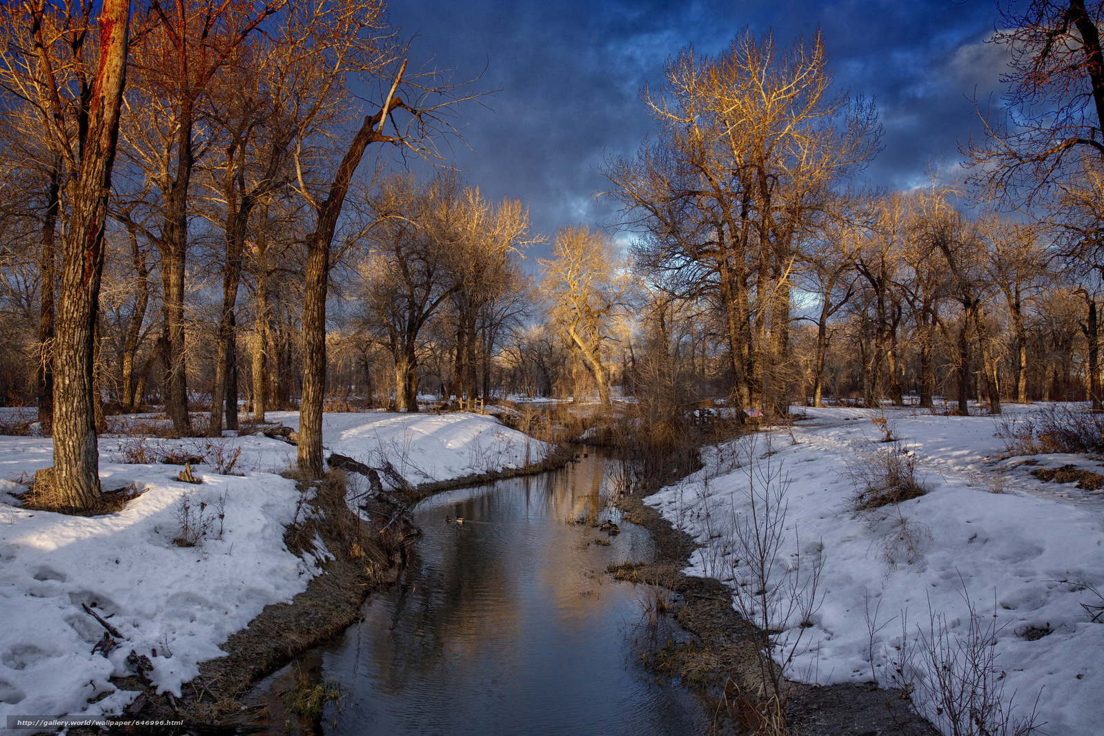 Download wallpaper winter,  river,  trees,  landscape free desktop wallpaper in the resolution 2048x1365 — picture №646996
