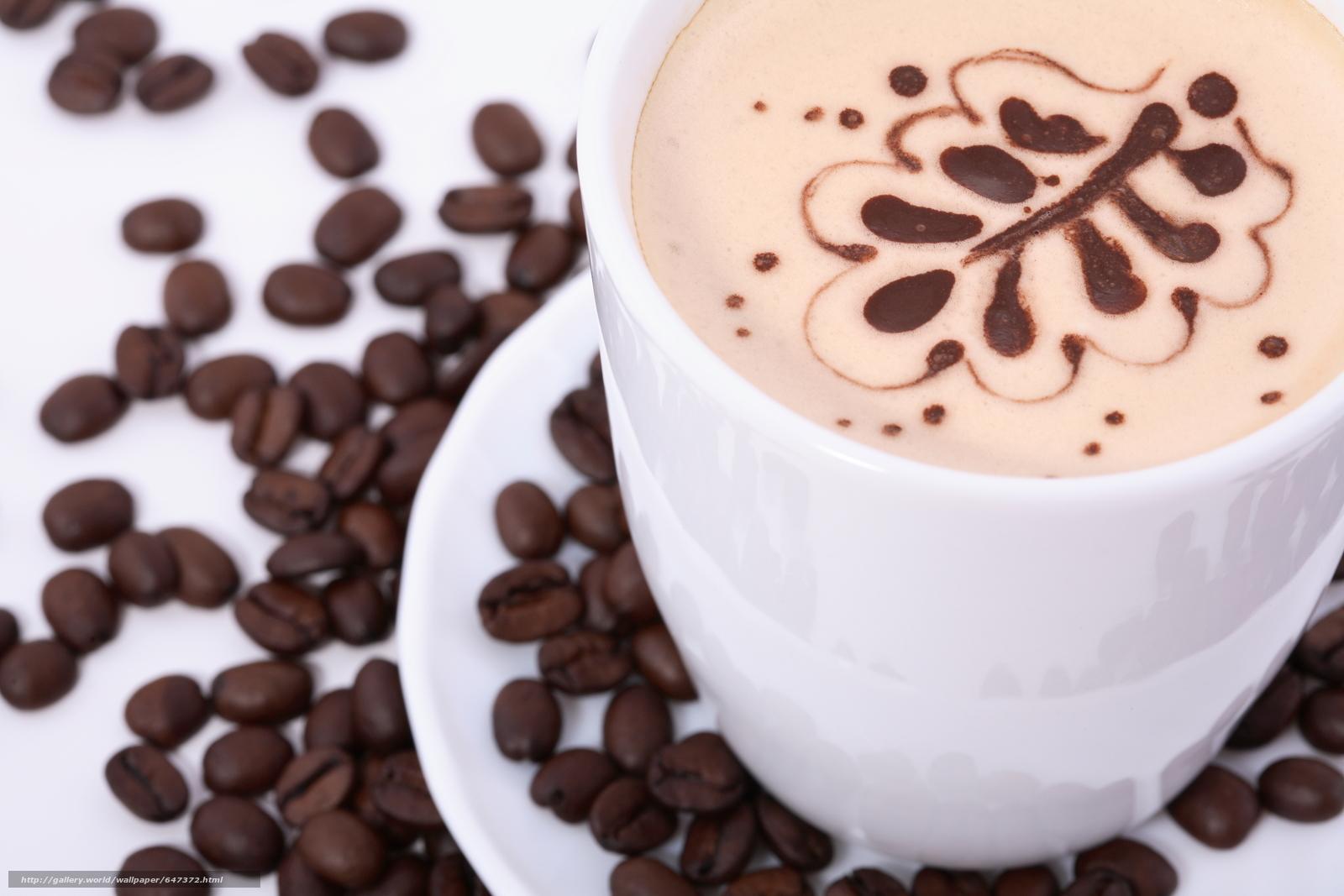 scaricare gli sfondi caffè,  Singolo Drink,  bevande,  chicchi di caffè Sfondi gratis per la risoluzione del desktop 4368x2912 — immagine №647372