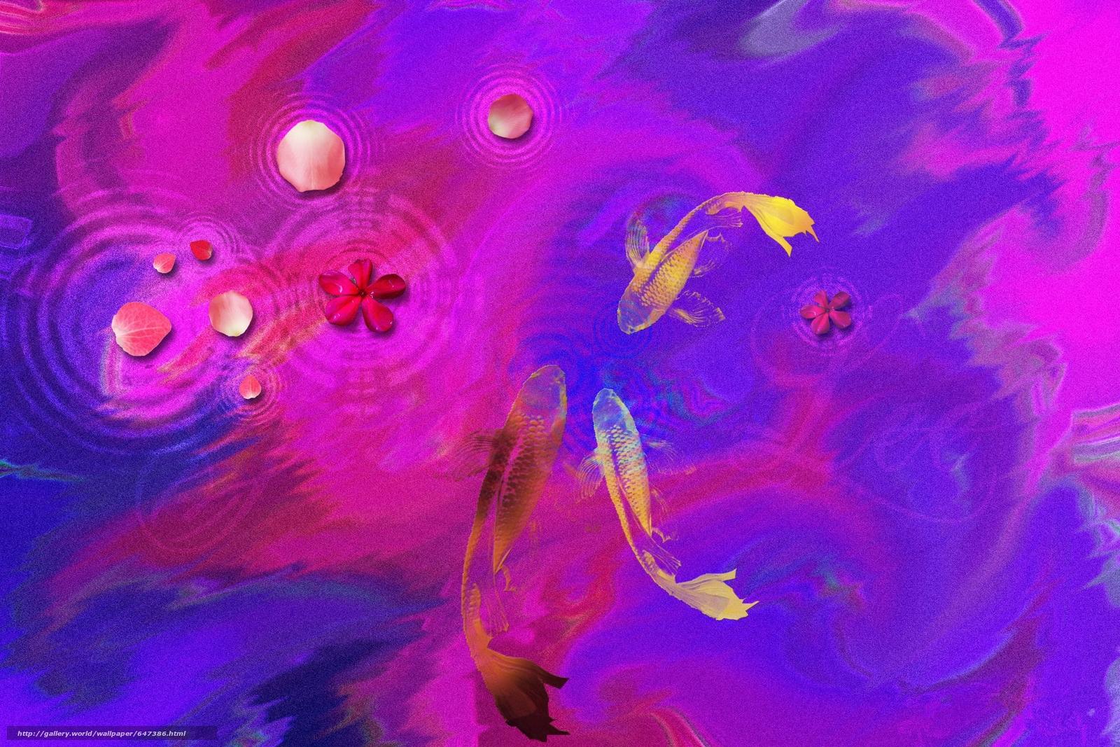 scaricare gli sfondi astrazione,  pesce,  arte Sfondi gratis per la risoluzione del desktop 3000x2000 — immagine №647386