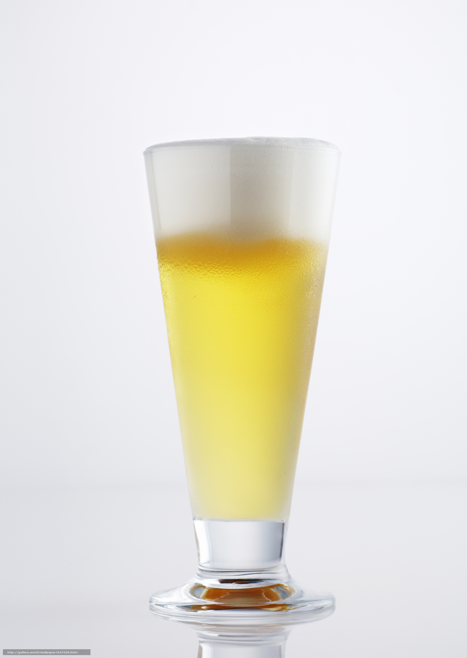 scaricare gli sfondi schiuma della birra,  opupennoe,  birra,  pivasik Sfondi gratis per la risoluzione del desktop 2094x2950 — immagine №647439