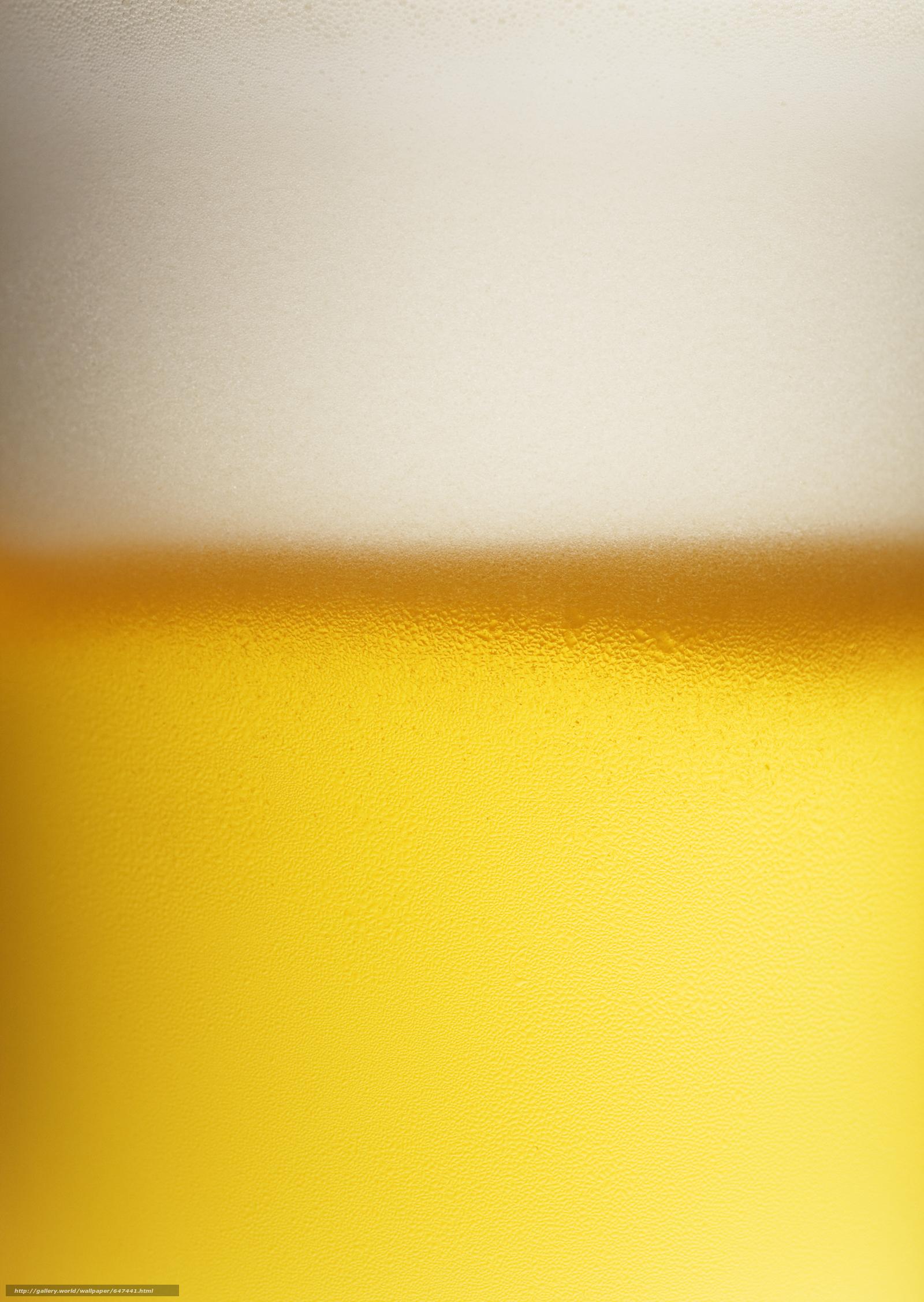 Descargar gratis espuma de la cerveza,  opupennoe,  cerveza,  pivasik Fondos de escritorio en la resolucin 2094x2950 — imagen №647441