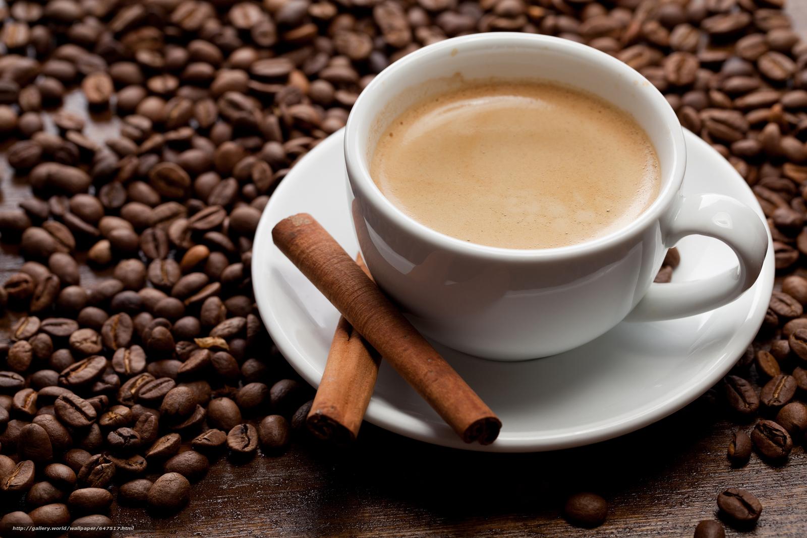 scaricare gli sfondi caffè,  Grano,  mug Sfondi gratis per la risoluzione del desktop 5616x3744 — immagine №647517