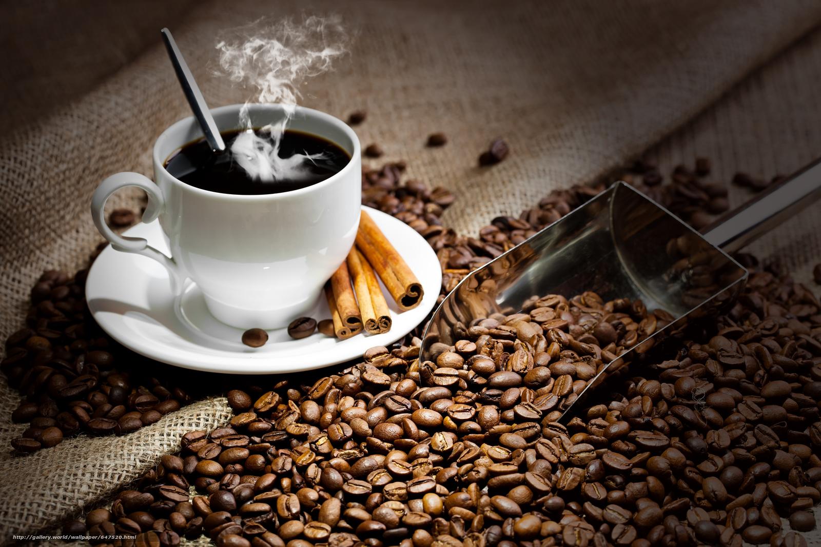 scaricare gli sfondi caffè,  Grano,  mug Sfondi gratis per la risoluzione del desktop 5616x3744 — immagine №647520