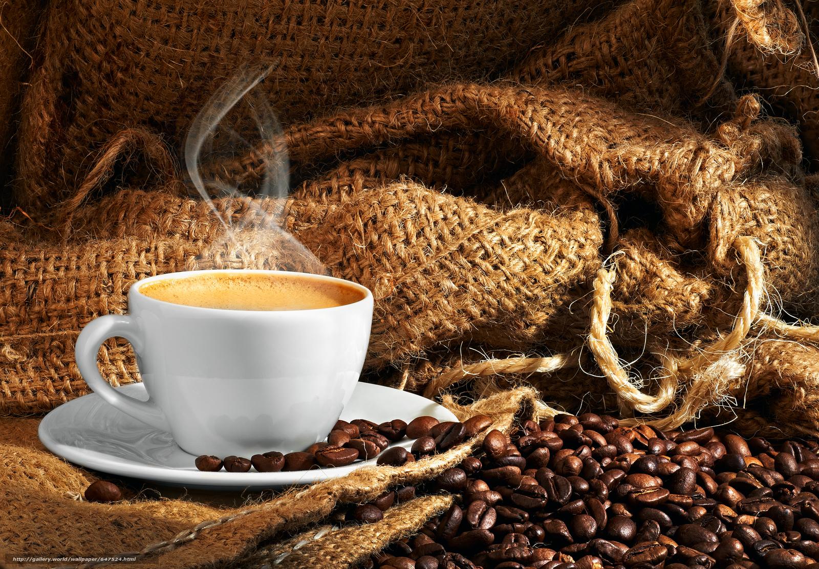 scaricare gli sfondi caffè,  Grano,  mug Sfondi gratis per la risoluzione del desktop 4256x2958 — immagine №647524