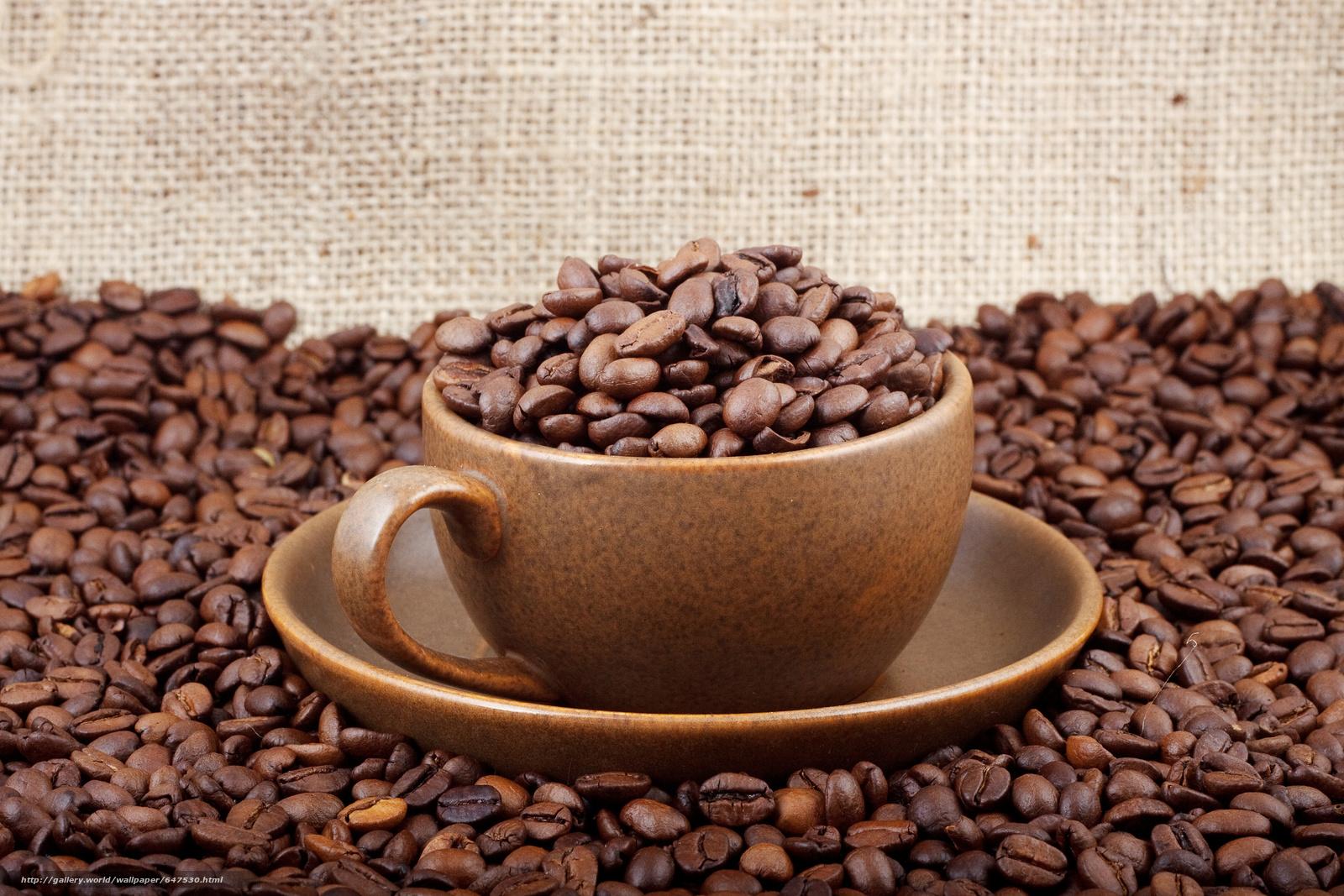 Download wallpaper coffee,  Grain,  mug free desktop wallpaper in the resolution 4752x3168 — picture №647530