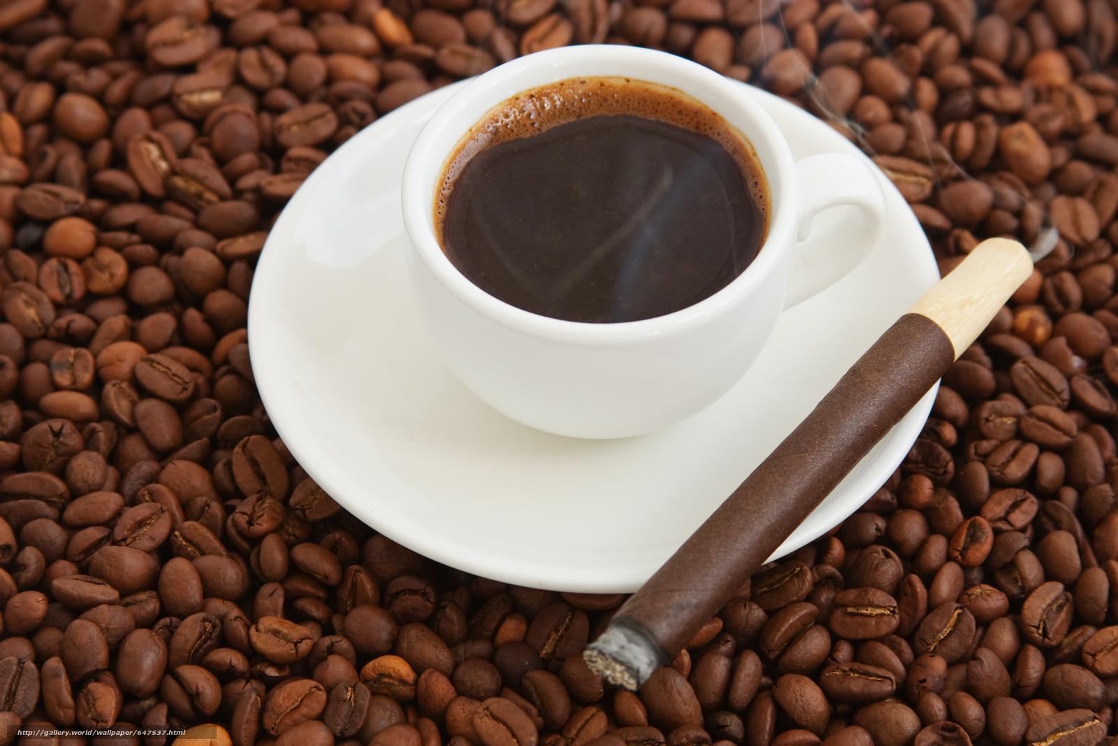 scaricare gli sfondi caffè,  Grano,  mug Sfondi gratis per la risoluzione del desktop 7776x5184 — immagine №647537