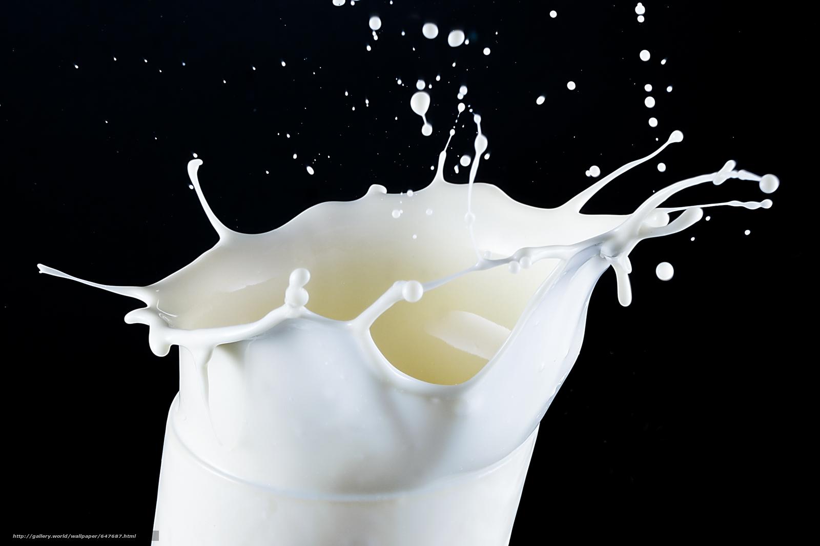 Скачать обои молоко,  капли,  брызги бесплатно для рабочего стола в разрешении 2532x1686 — картинка №647687