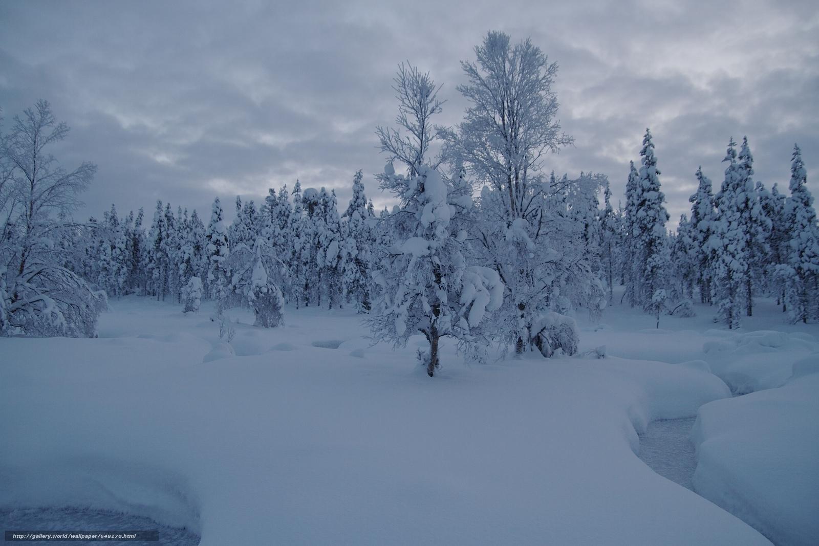 scaricare gli sfondi Saariselka,  Lapponia,  Finlandia,  Saariselkä Sfondi gratis per la risoluzione del desktop 3600x2400 — immagine №648170