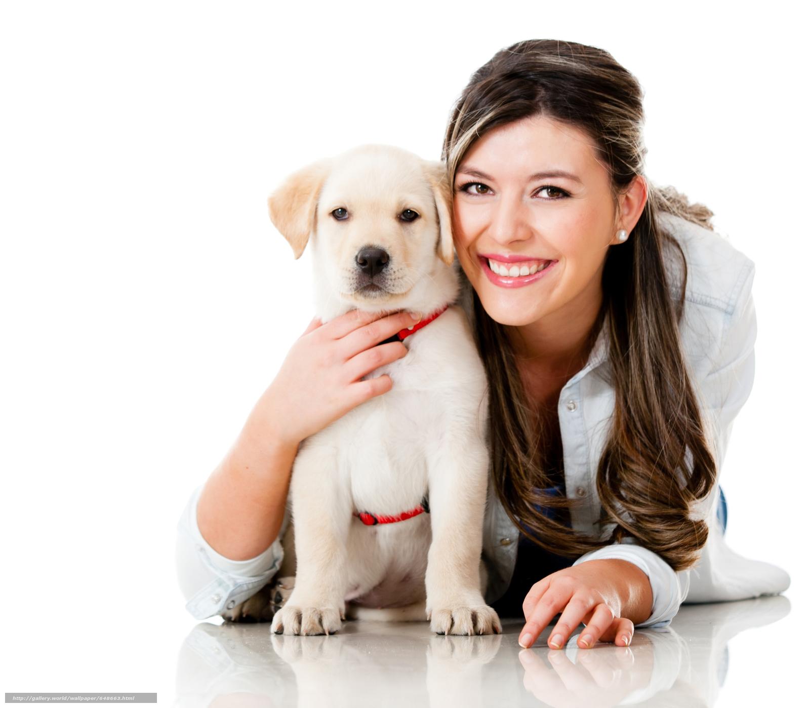 scaricare gli sfondi cane,  Cane,  animali,  cucciolo Sfondi gratis per la risoluzione del desktop 6114x5342 — immagine №648663