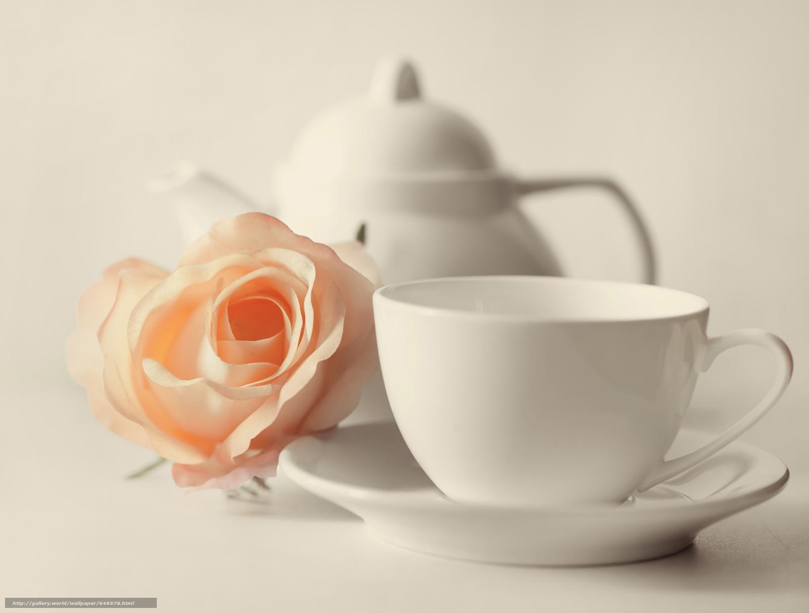 Download wallpaper cup,  mug,  kettle,  flower free desktop wallpaper in the resolution 6000x4541 — picture №649578