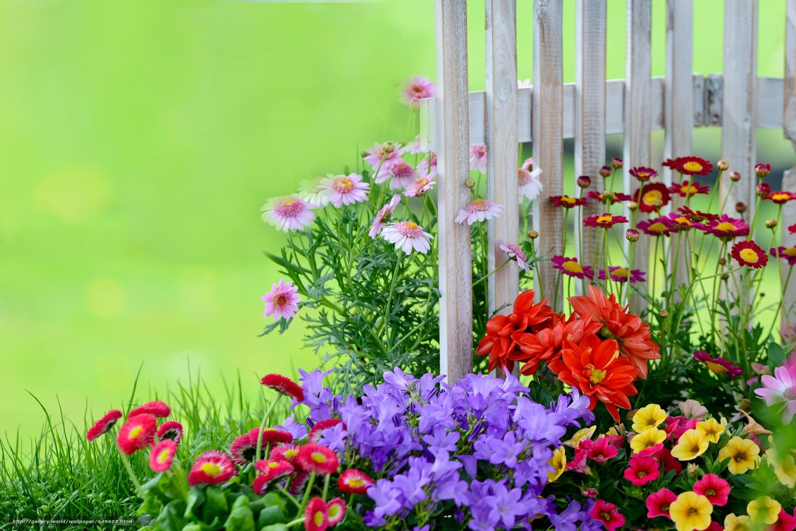 Скачать обои сад,  клумба,  забор бесплатно для рабочего стола в разрешении 5743x3833 — картинка №649605
