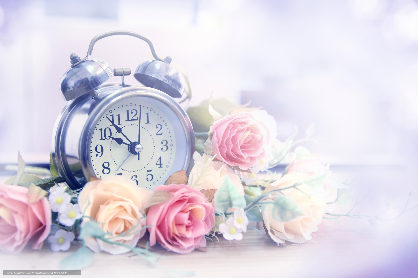 Download wallpaper alarm clock,  watch,  Flowers,  Roses free desktop wallpaper in the resolution 6000x4000 — picture №649647
