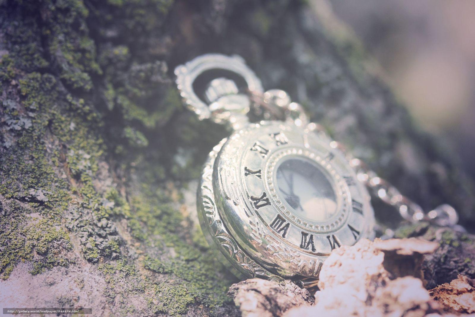 Download wallpaper watch,  watch,  nature,  KORA free desktop wallpaper in the resolution 2592x1728 — picture №649674