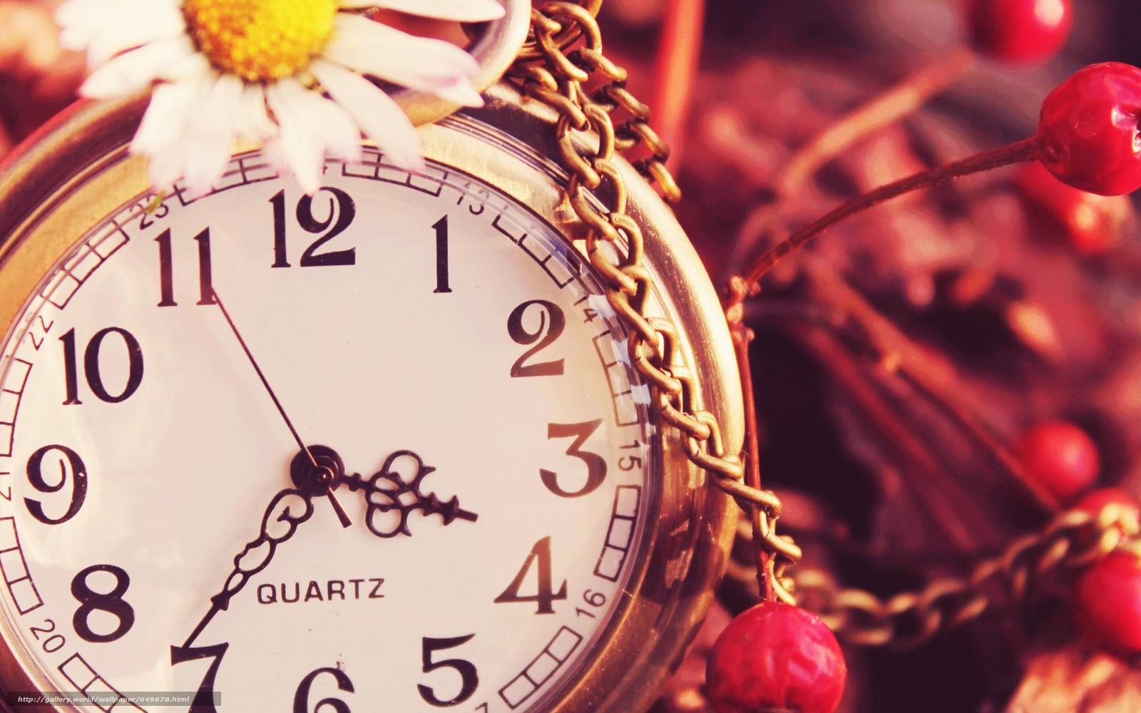 Скачать обои часы,  часики,  цепочка,  ромашка бесплатно для рабочего стола в разрешении 2560x1600 — картинка №649678