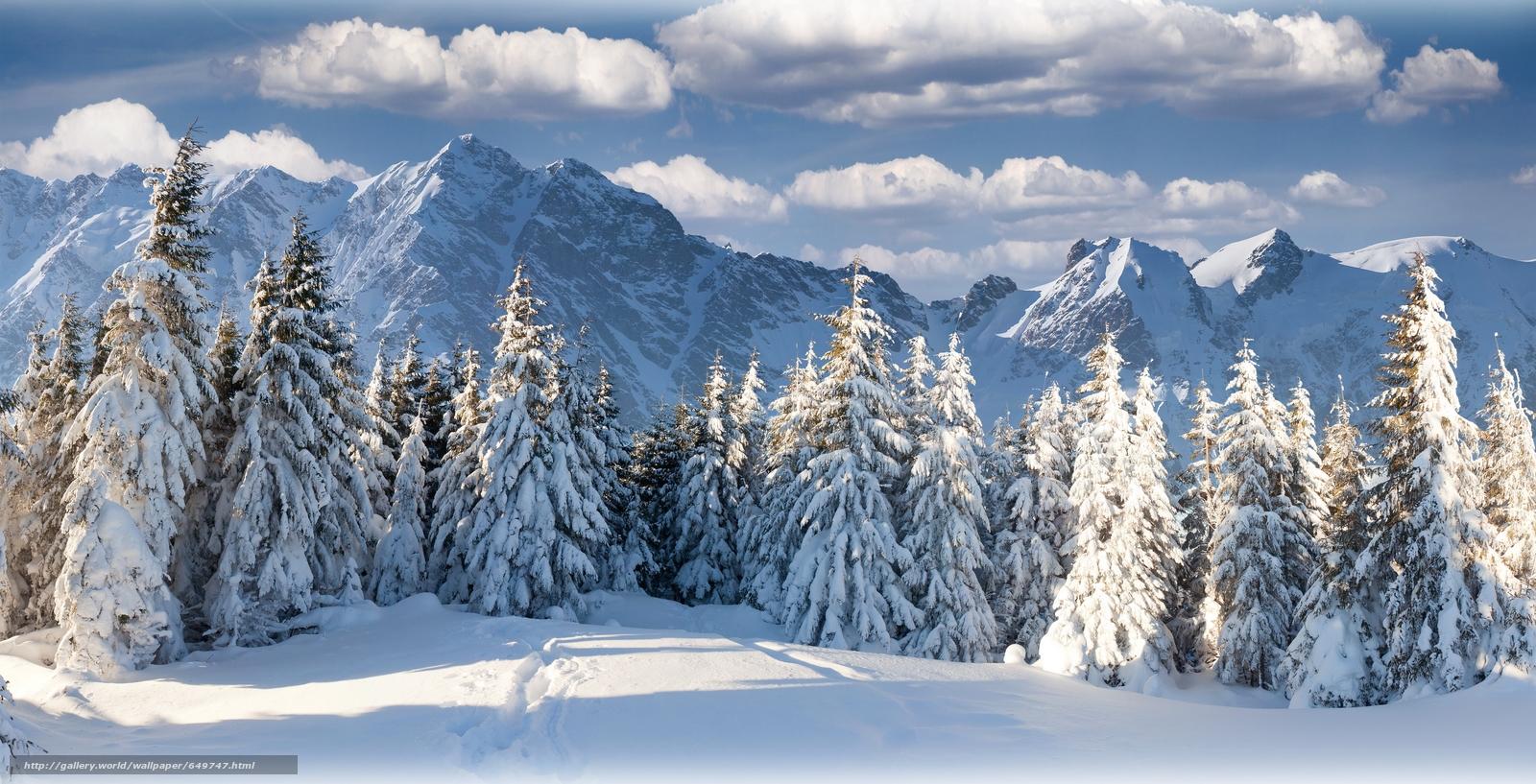 Скачать обои зима,  снег,  горы,  лес бесплатно для рабочего стола в разрешении 6000x3063 — картинка №649747