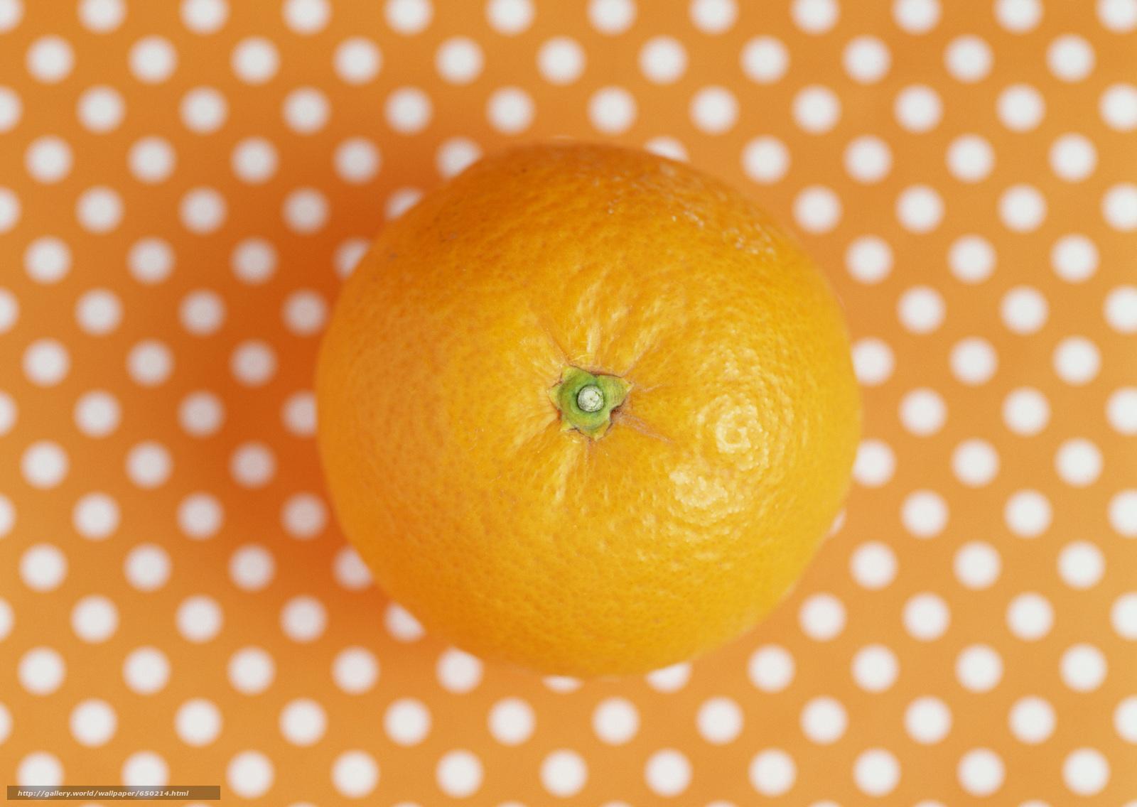 Baixar Wallpaper laranja,  fundo,  bolinhas,  comida Papis de parede grtis na resoluo 2950x2094 — quadro №650214