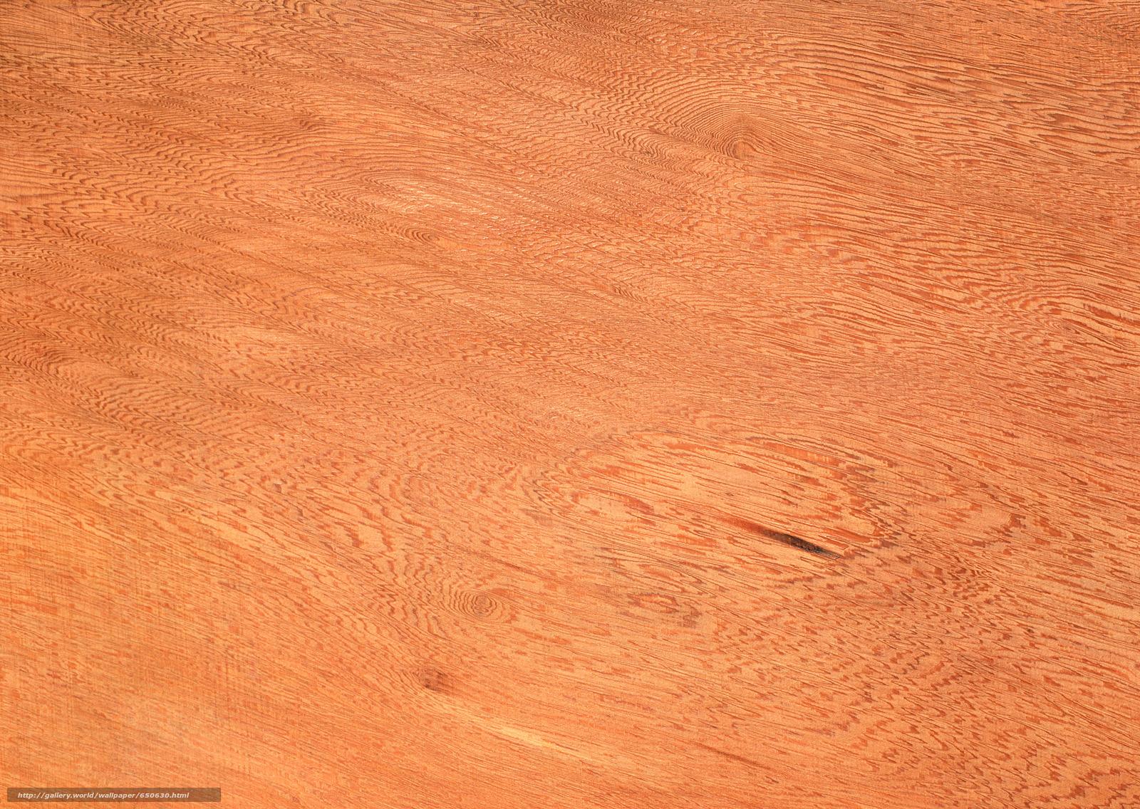 Baixar Wallpaper TEXTURA,  Textura,  árvore,  fundo Papis de parede grtis na resoluo 2950x2094 — quadro №650630